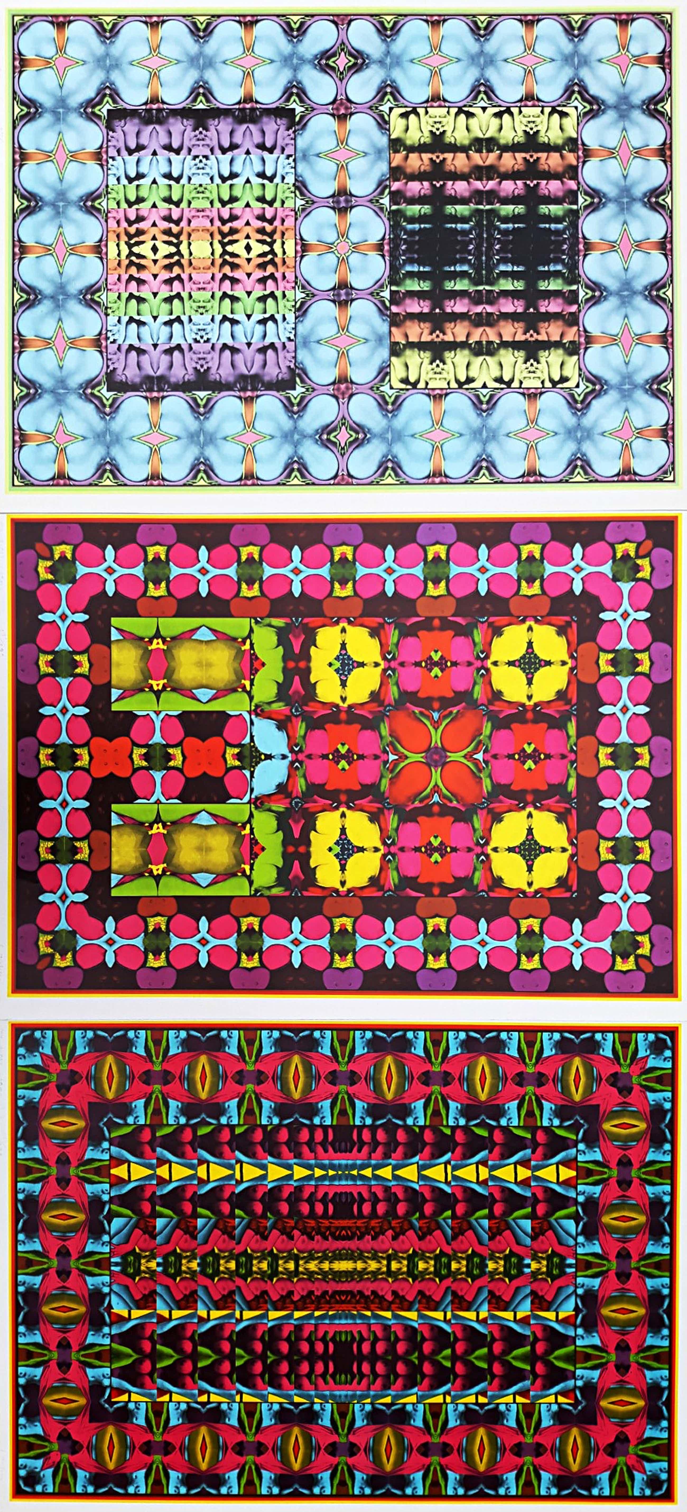 Shinkichi Tajiri - My secret garden no. 1, 2 & 3, complete serie gesigneerde offset kopen? Bied vanaf 195!