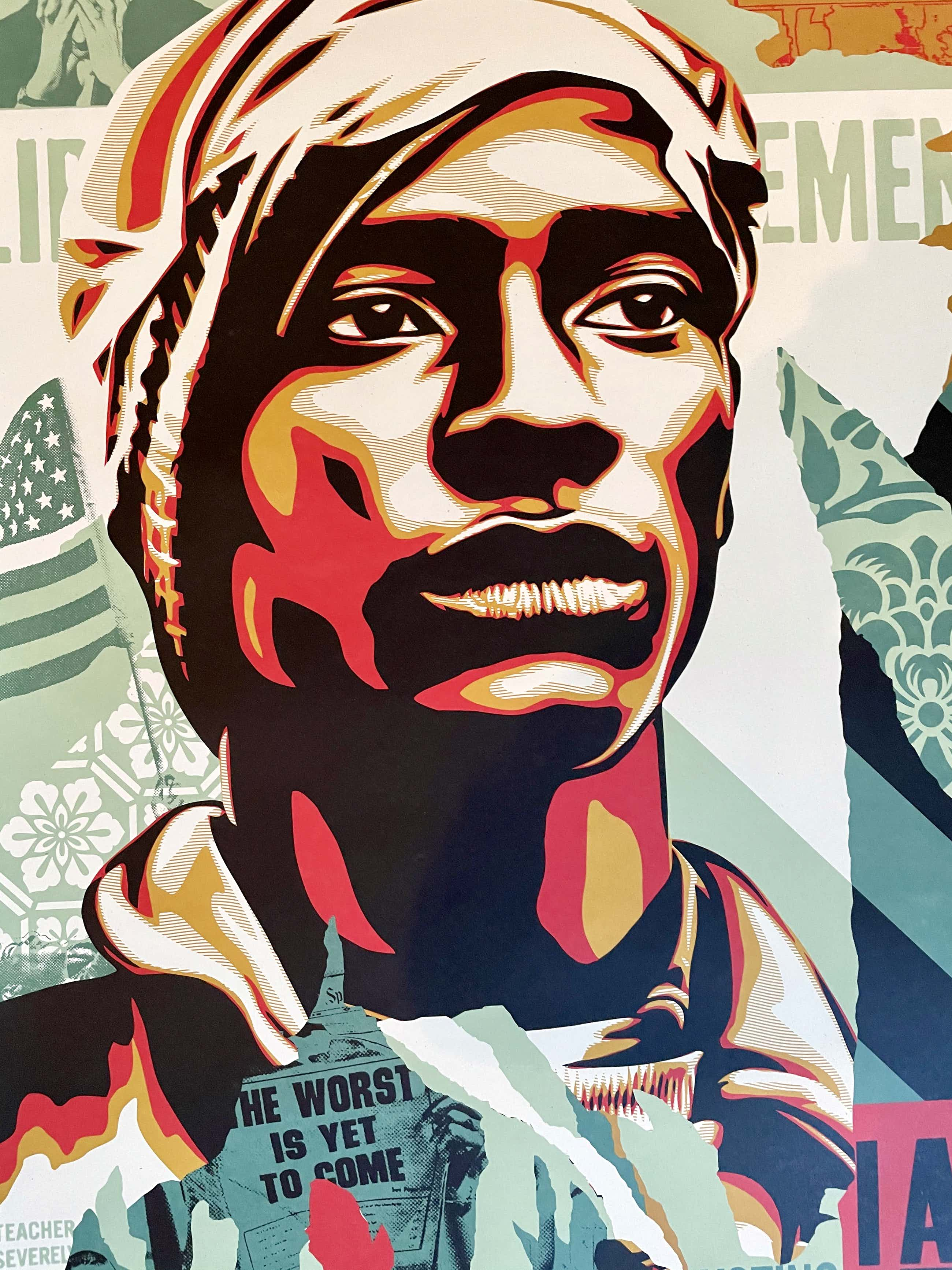 Shepard Fairey - Voting Rights Are Human Rights - OBEY - kopen? Bied vanaf 70!