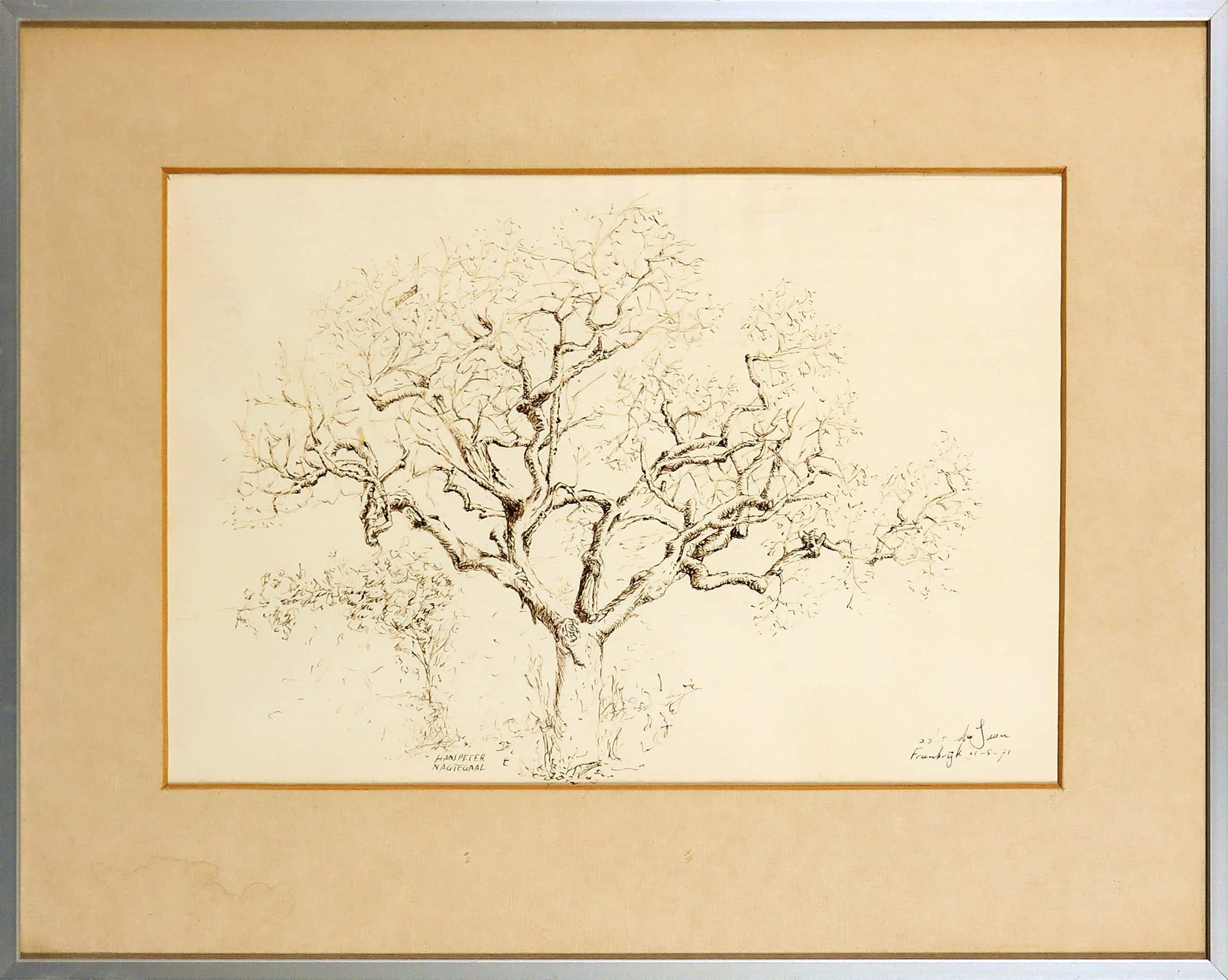 Hans Peter Nagtegaal - Sepia pentekening, Sinaasappelboom - Ingelijst kopen? Bied vanaf 180!