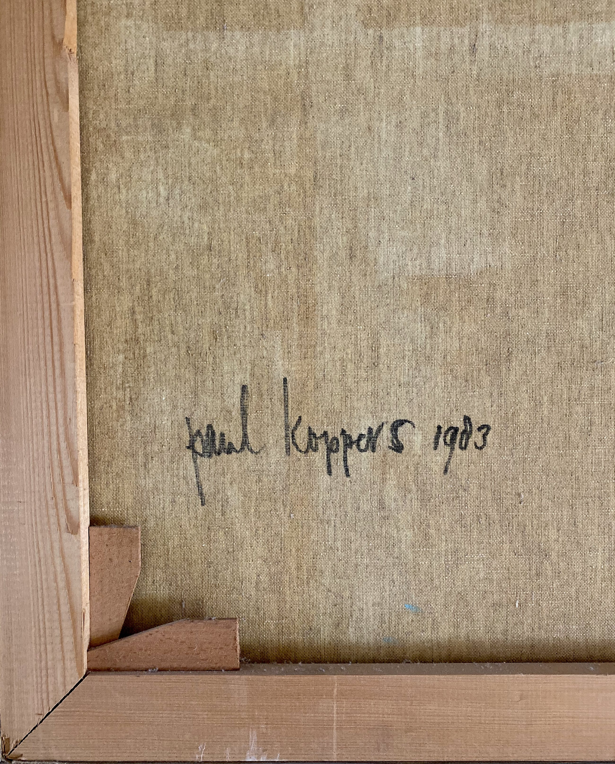 Paul Koppers - Cool Dream kopen? Bied vanaf 20!
