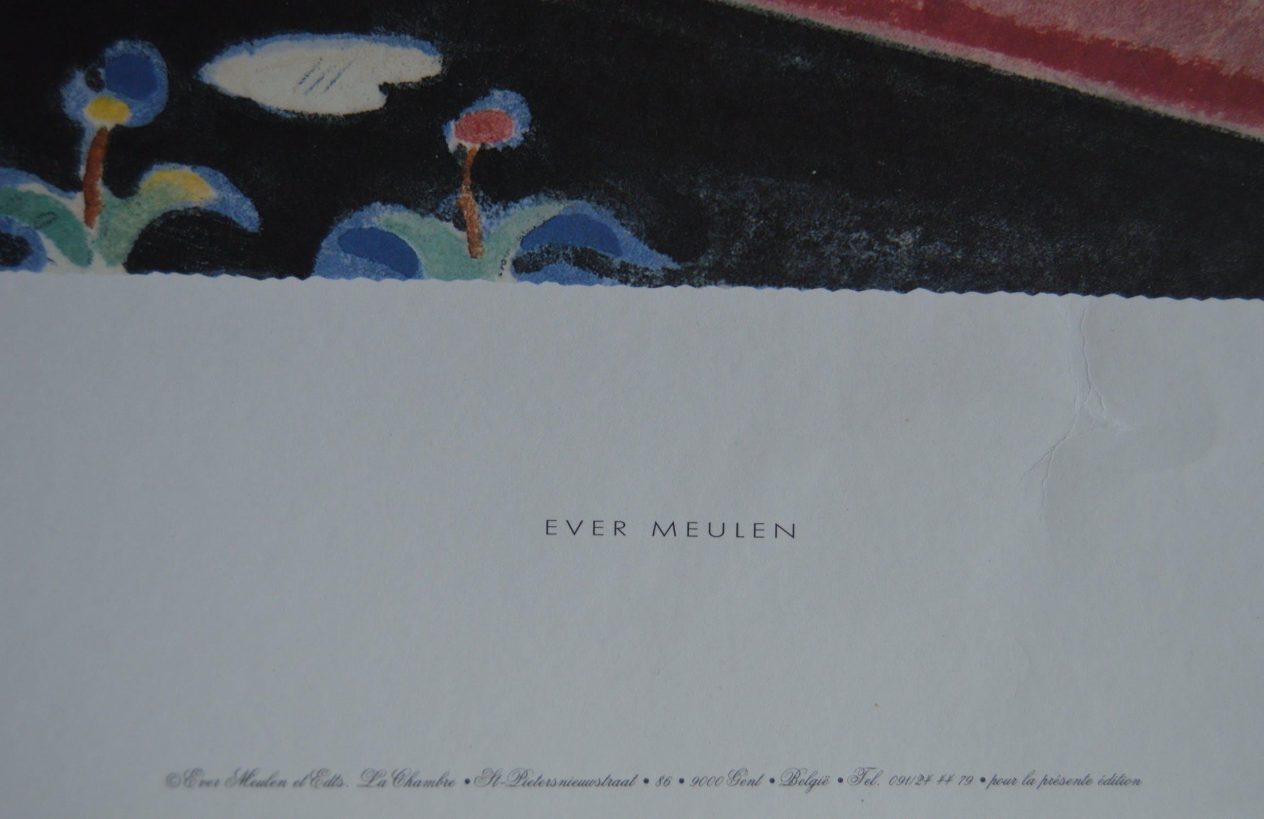 Ever Meulen - 'Ever Meulen' kopen? Bied vanaf 40!