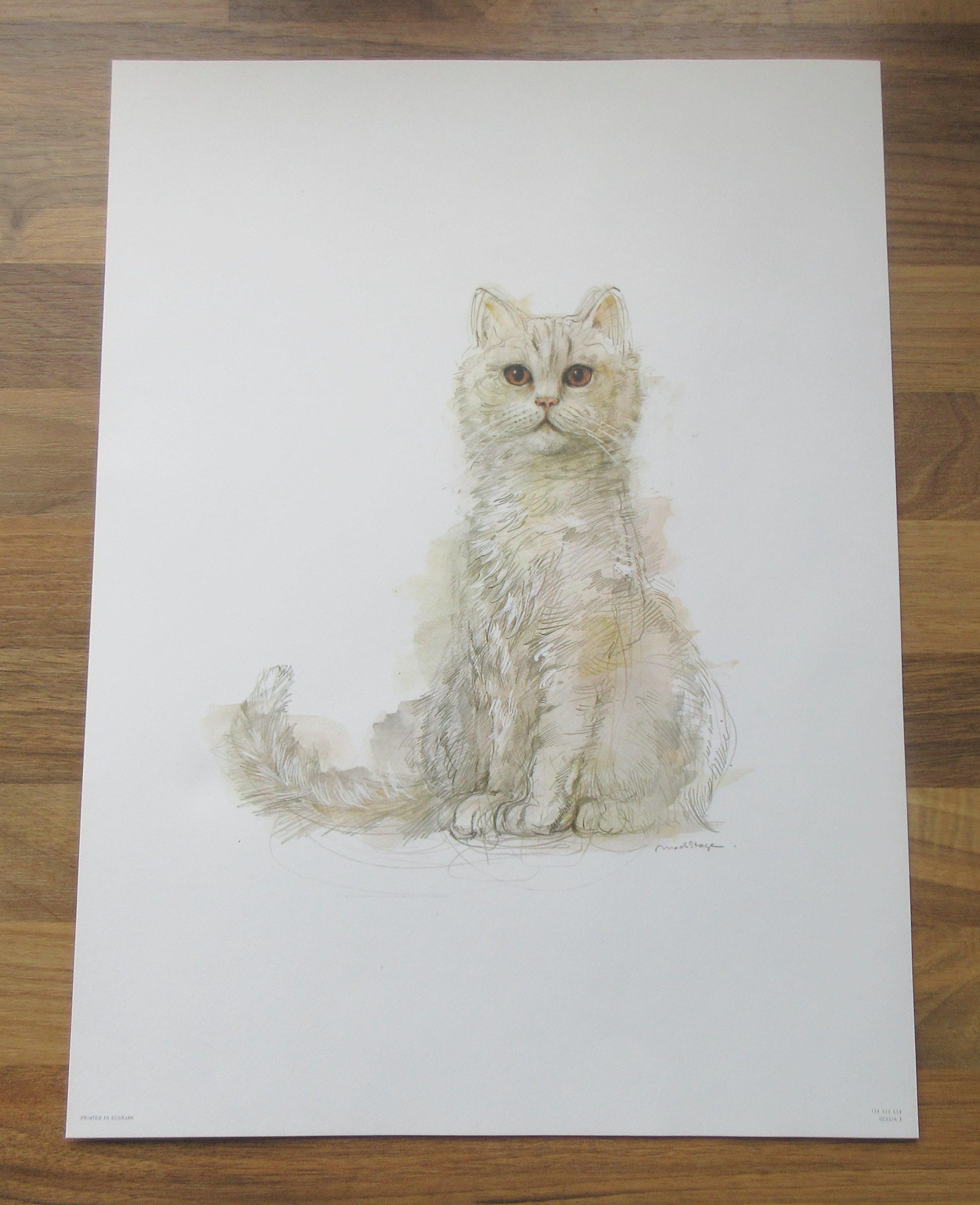 Niet of onleesbaar gesigneerd - Mads Stage - 4 Studies of Cats kopen? Bied vanaf 1!