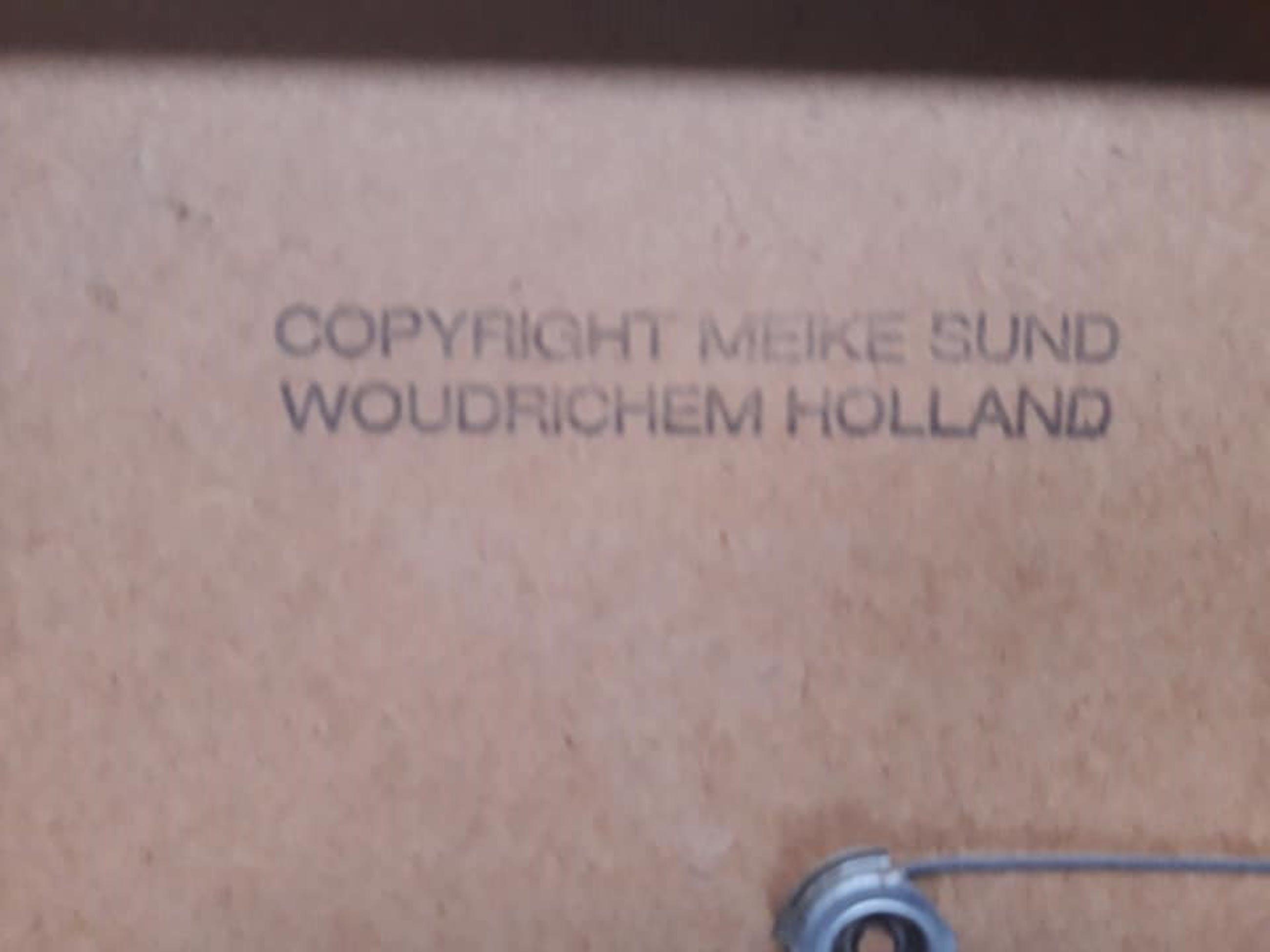 Meike Sund - Gesprek in 't park. kopen? Bied vanaf 45!