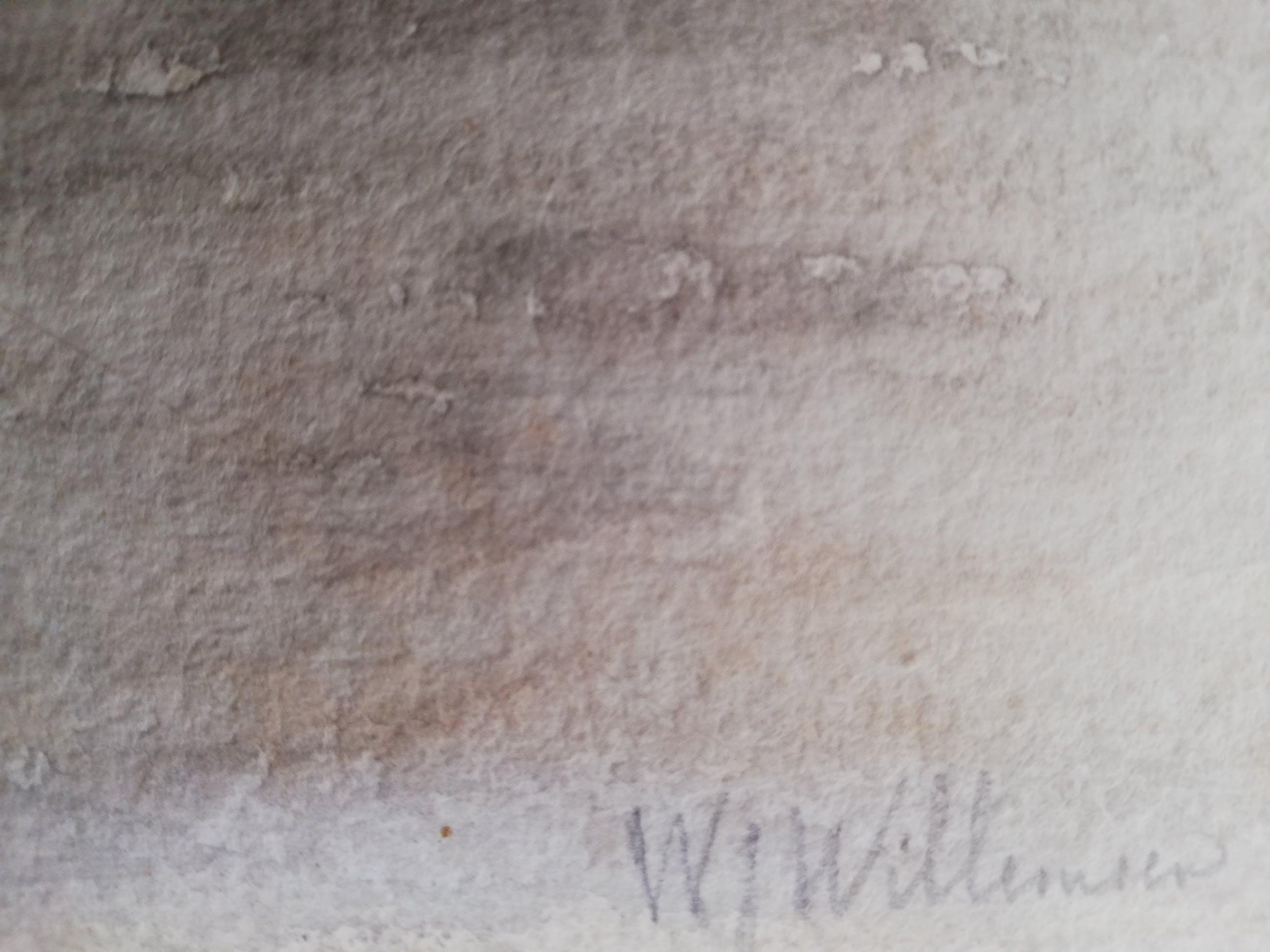 Willem Jan Willemsen - Rivierzicht kopen? Bied vanaf 70!