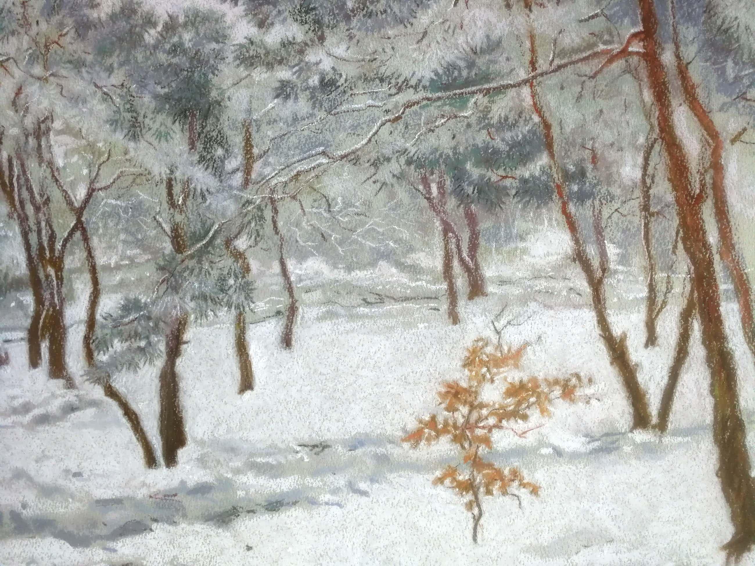 Wim van Ham - Wintergezicht. Dennenbos in de sneeuw. kopen? Bied vanaf 89!