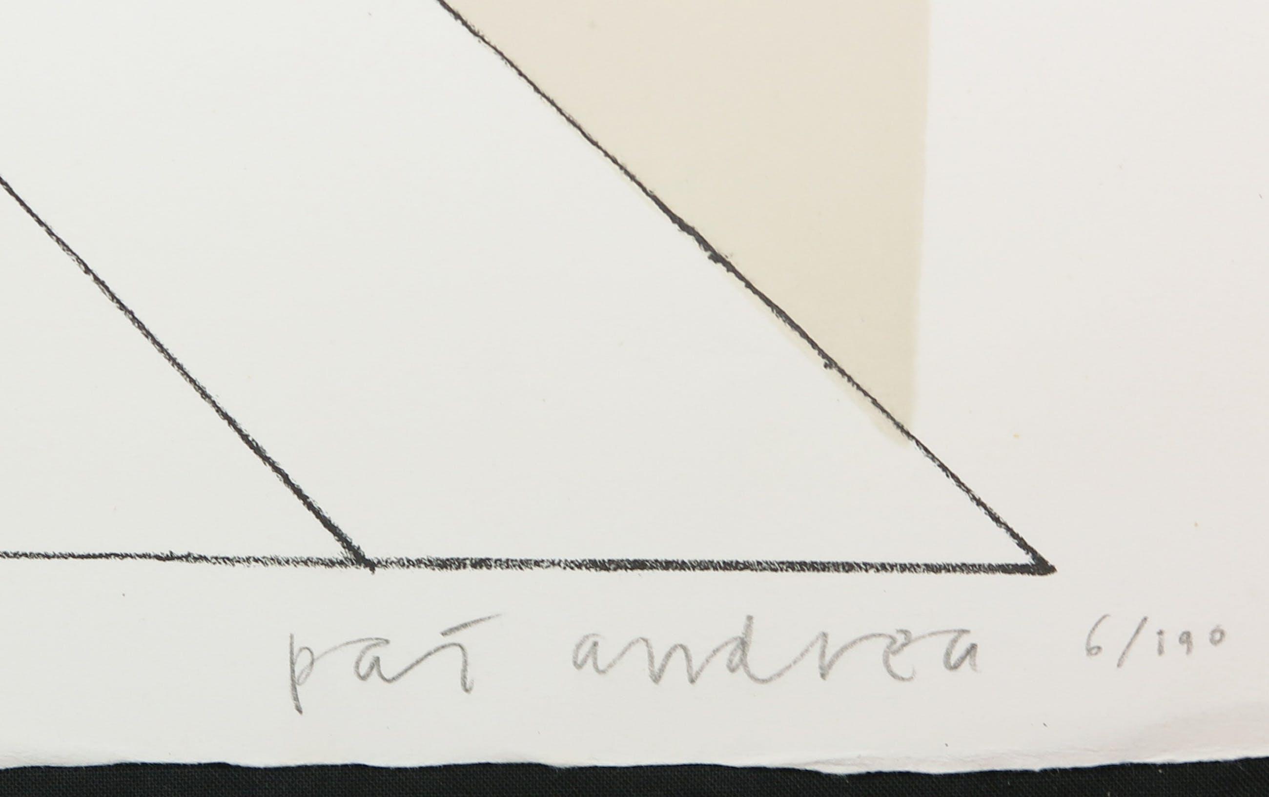 Pat Andrea - Litho, Zomeravondtraining kopen? Bied vanaf 1!
