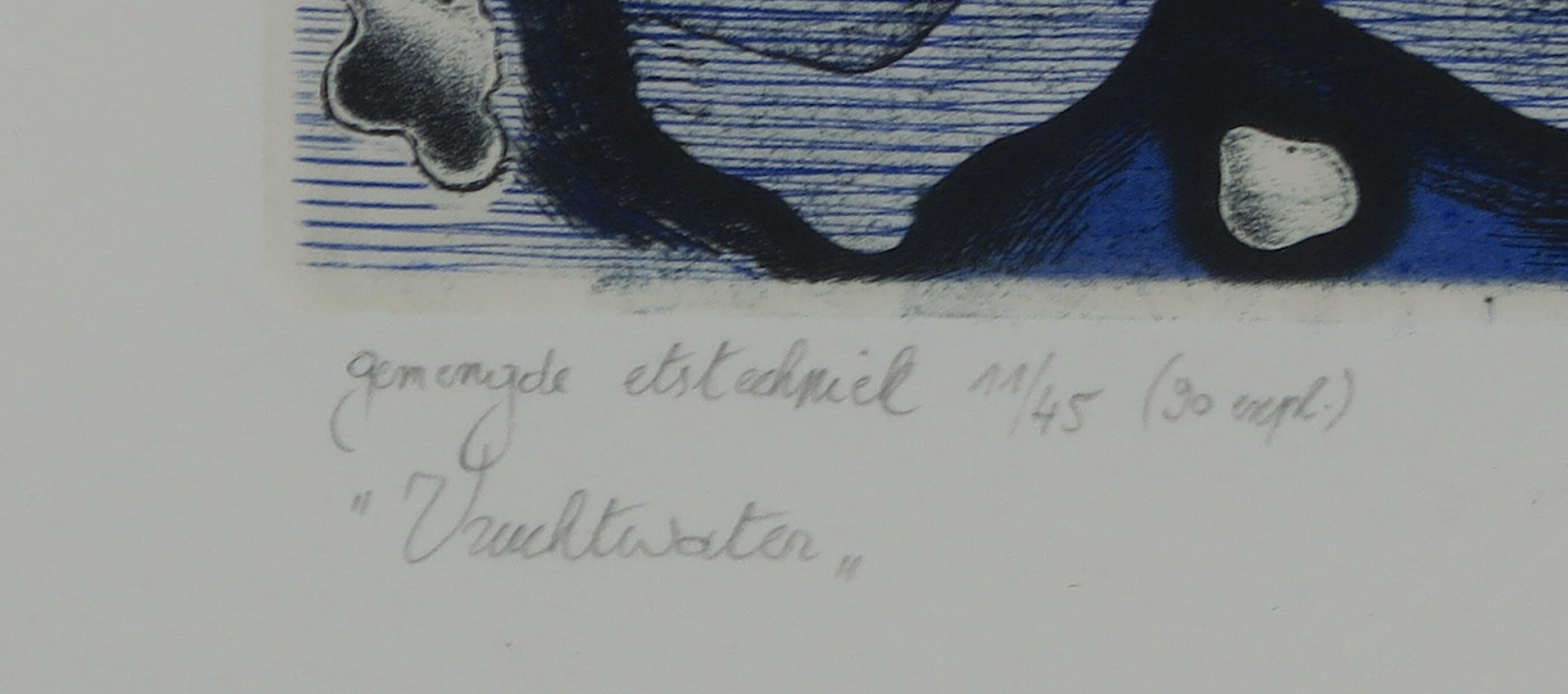 Hugo Besard - Gemengde etstechniek, Aquarius triptiek deel I/ Vruchtwater - Ingelijst (Groot) kopen? Bied vanaf 1!