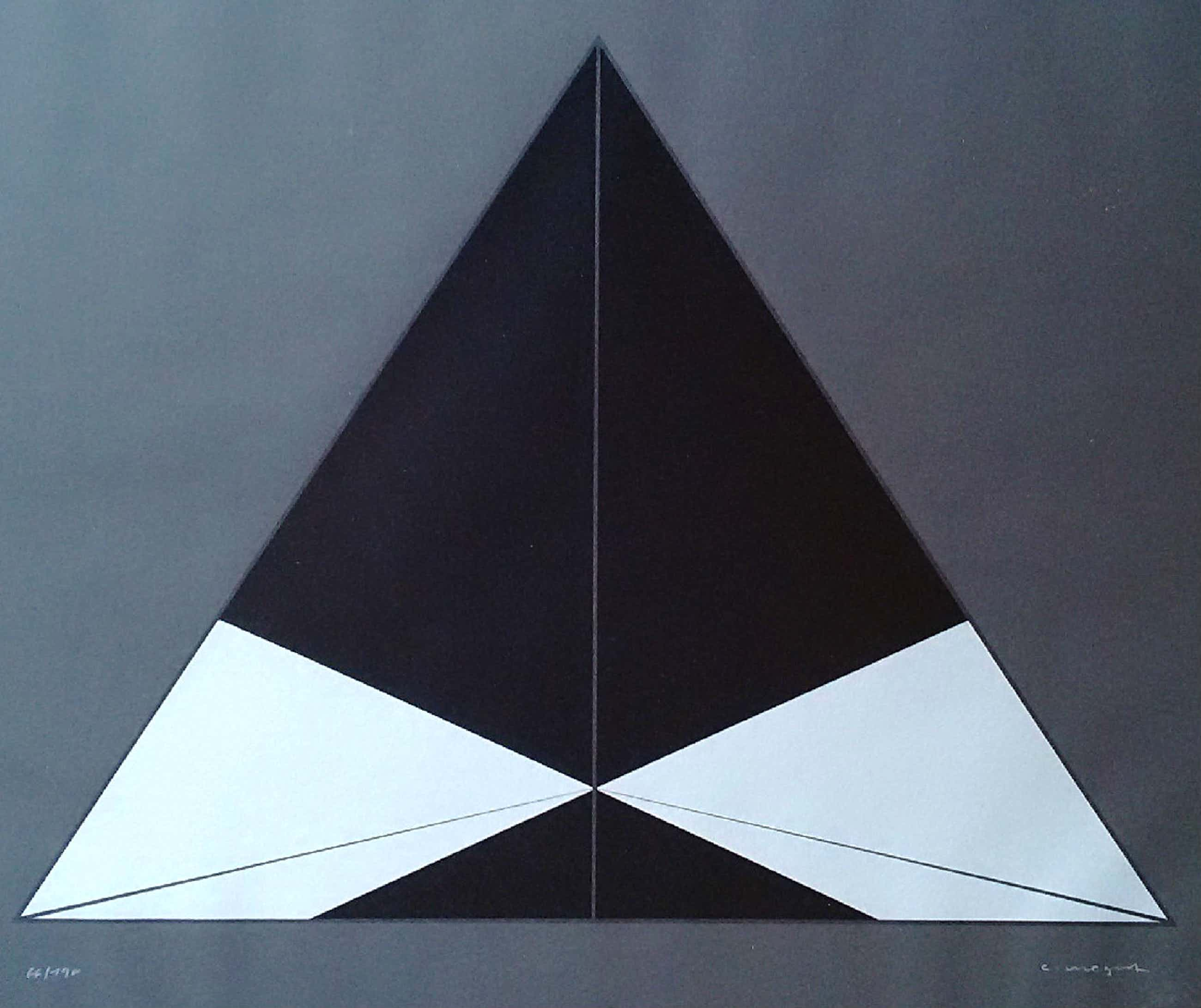 Christian Megert - Geometrisch abstracte compositie, zeefdruk kopen? Bied vanaf 95!
