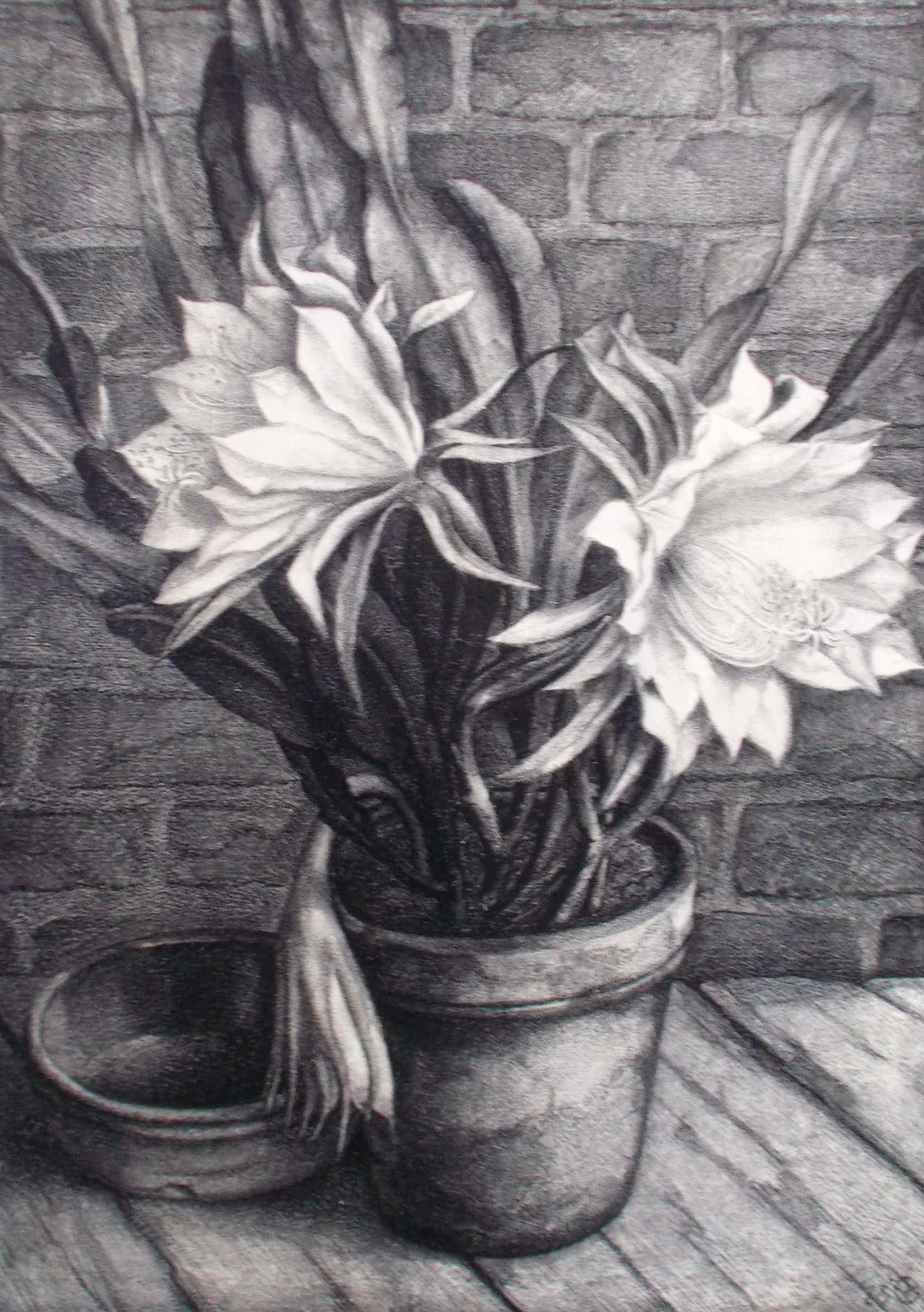 Aart van Dobbenburgh - Stilleven met cactus kopen? Bied vanaf 65!