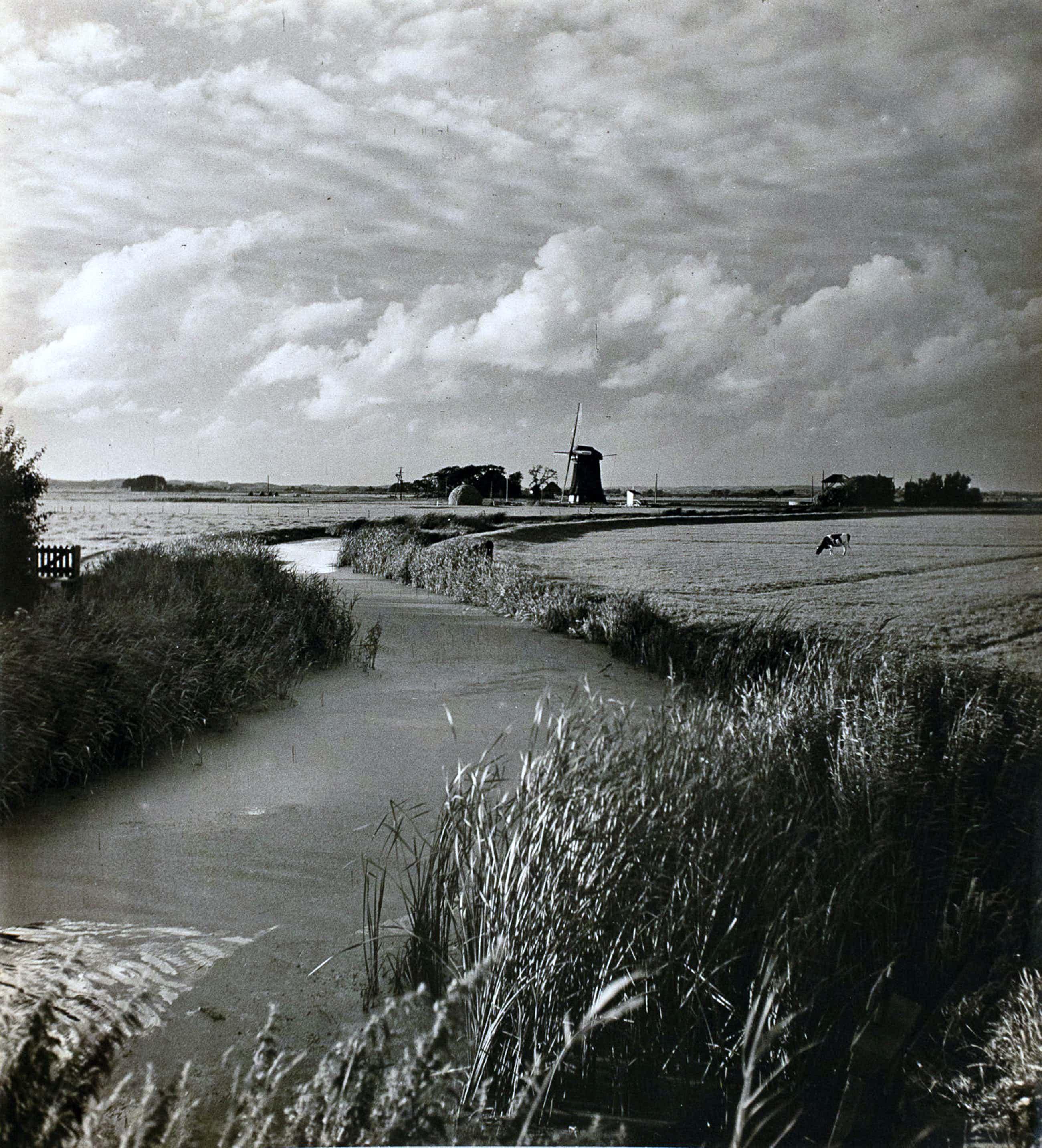 Cas Oorthuys - Noord-Holland met molen in het weiland - originele foto op bariet-fotopapier kopen? Bied vanaf 161!