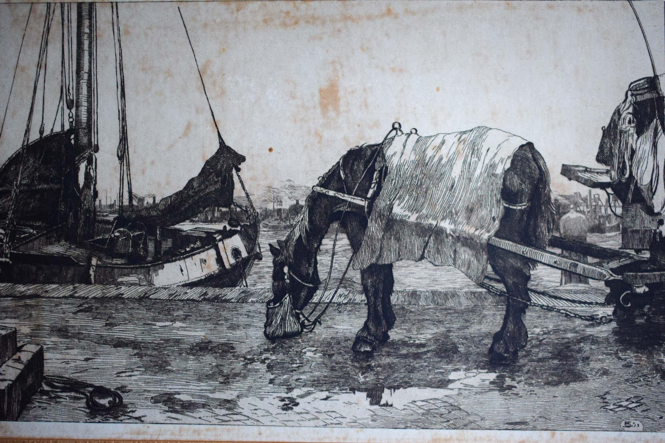 Jan Sirks - Paard op de kade kopen? Bied vanaf 40!
