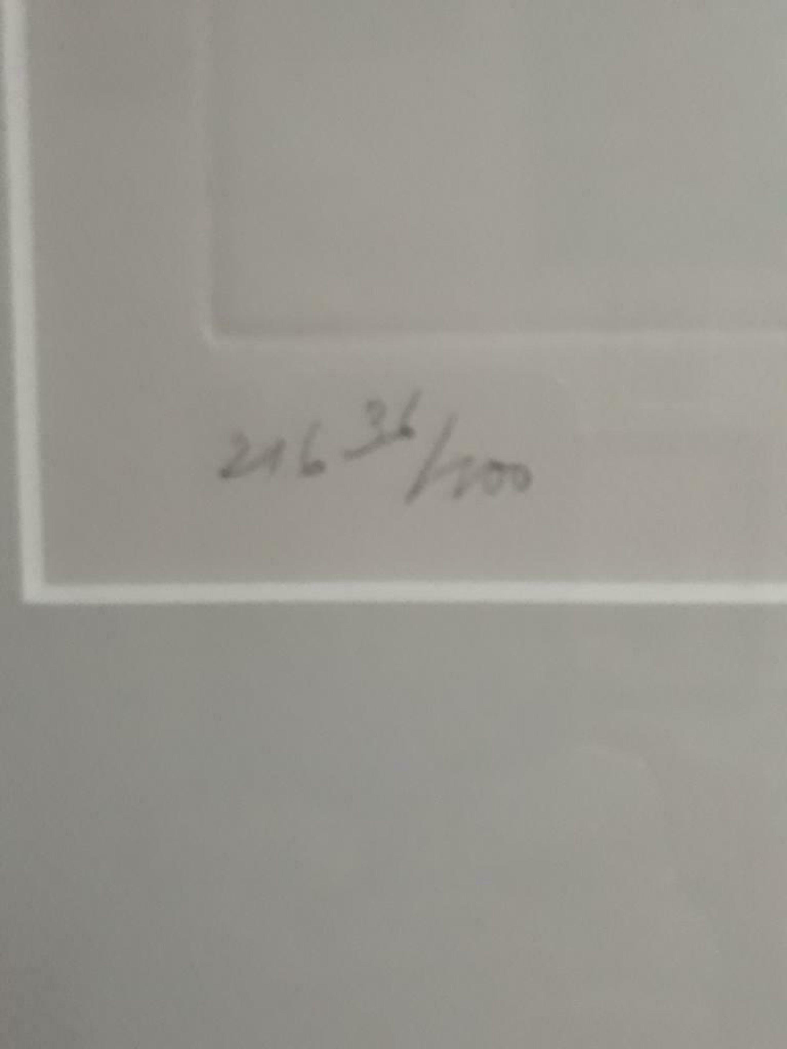 Ger Boosten - afgeprijsd : zeefdruk van Haan , genummerd 36/100 met het kaartje kopen? Bied vanaf 35!
