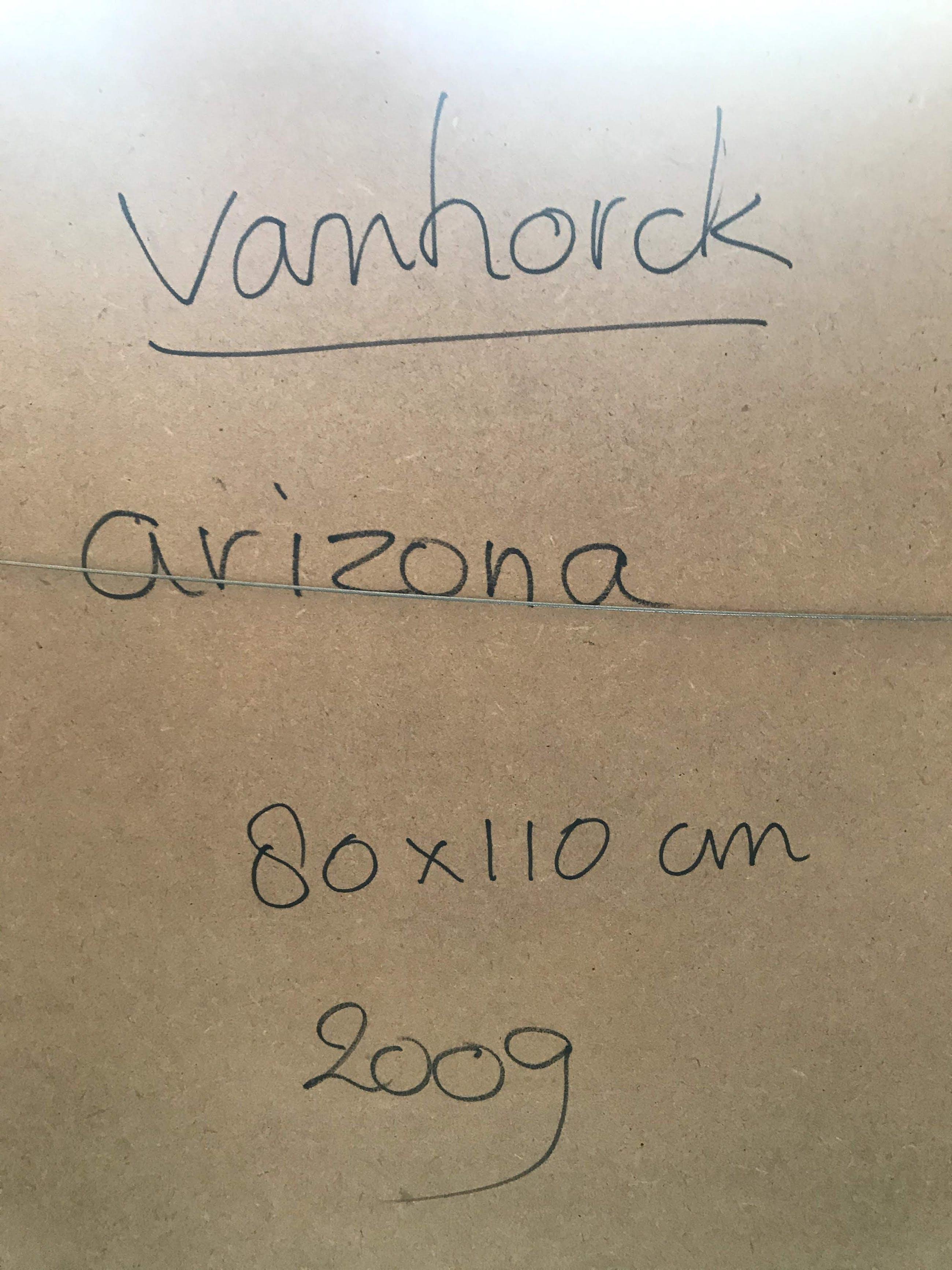 Hans Vanhorck - Arizona kopen? Bied vanaf 350!