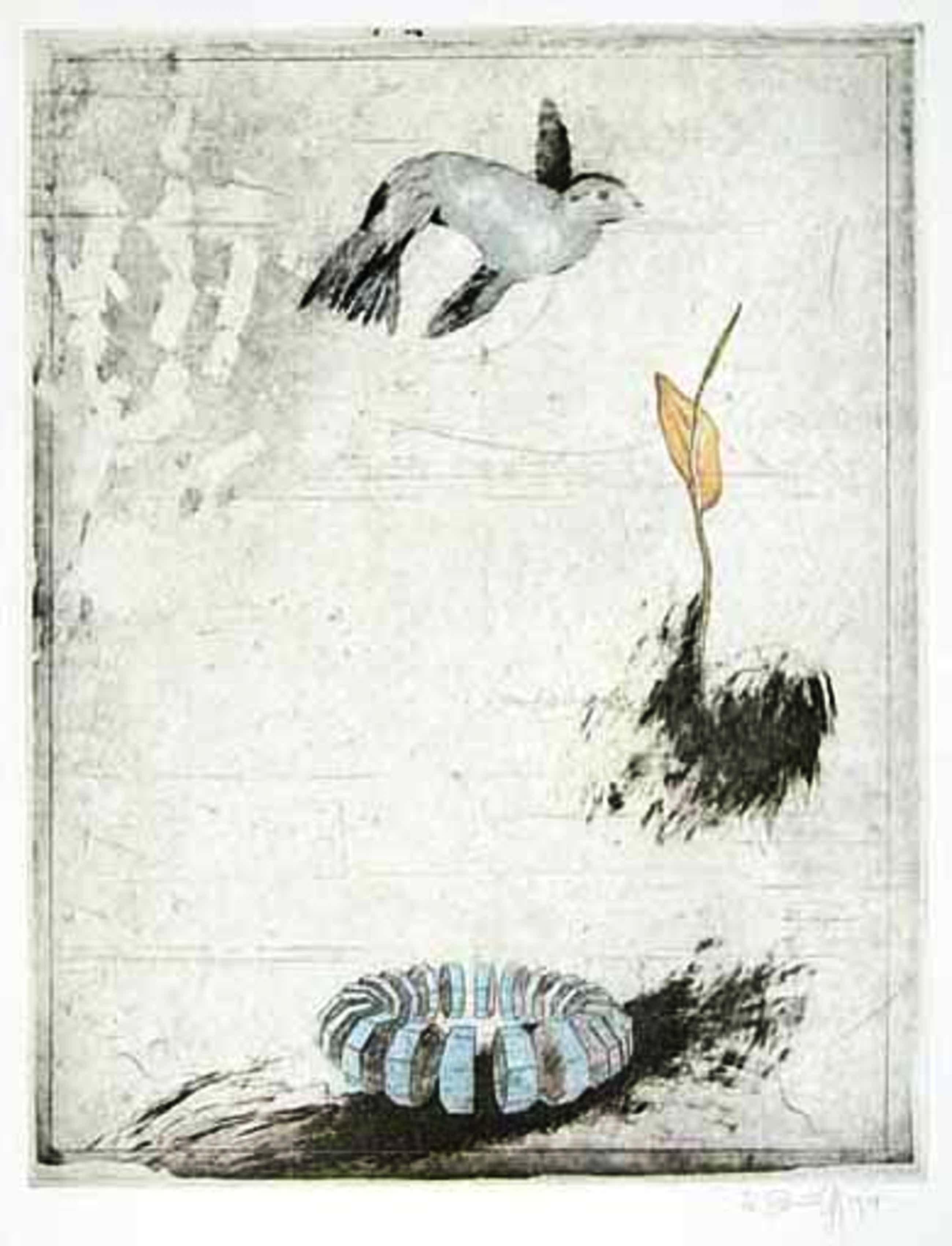 Donald Saff - Bird, Flower, Ring kopen? Bied vanaf 160!