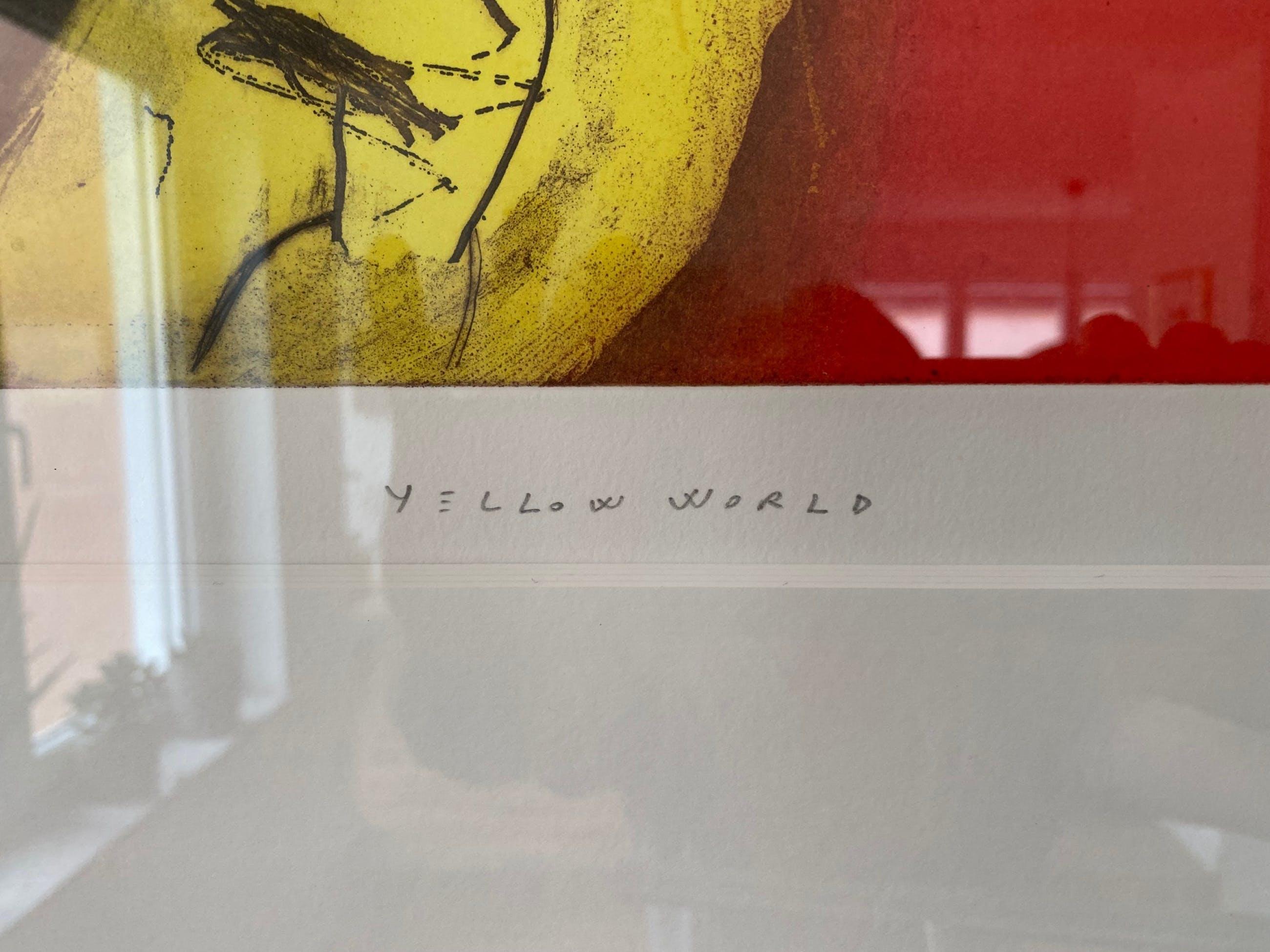 Joaquin Capa Eiriz - Yellow World kopen? Bied vanaf 700!