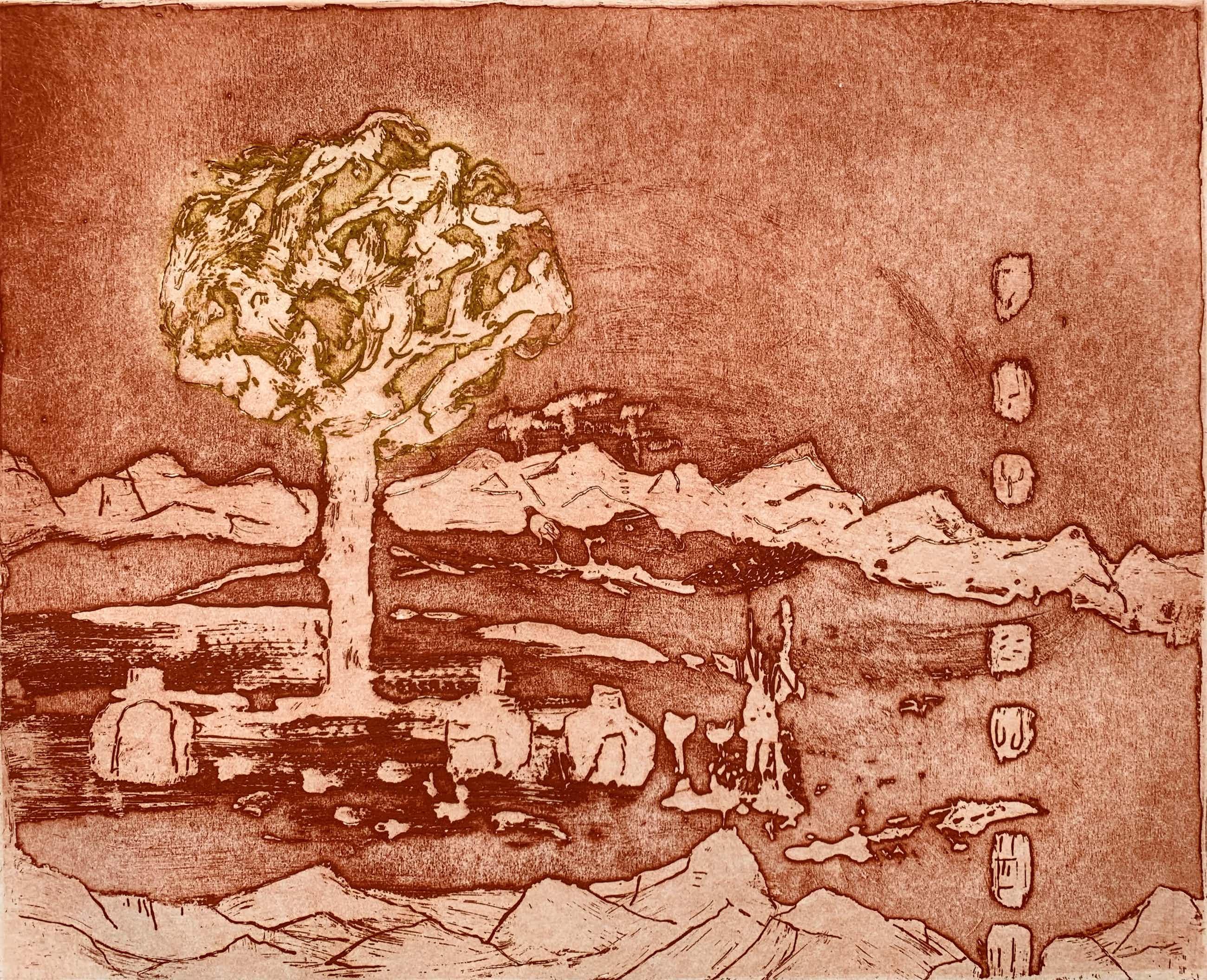 Jan Montyn - kleurenets - 'Sierra Rosario' - 1999 (KLEINE OPLAGE) kopen? Bied vanaf 120!