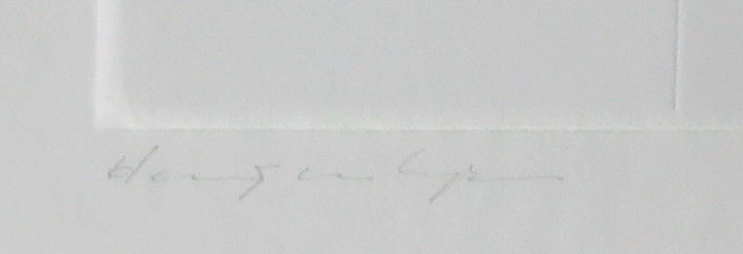 Harry van Kuyk - Reliëfdruk, V (uit het Groot Abecedarium) - Ingelijst kopen? Bied vanaf 150!