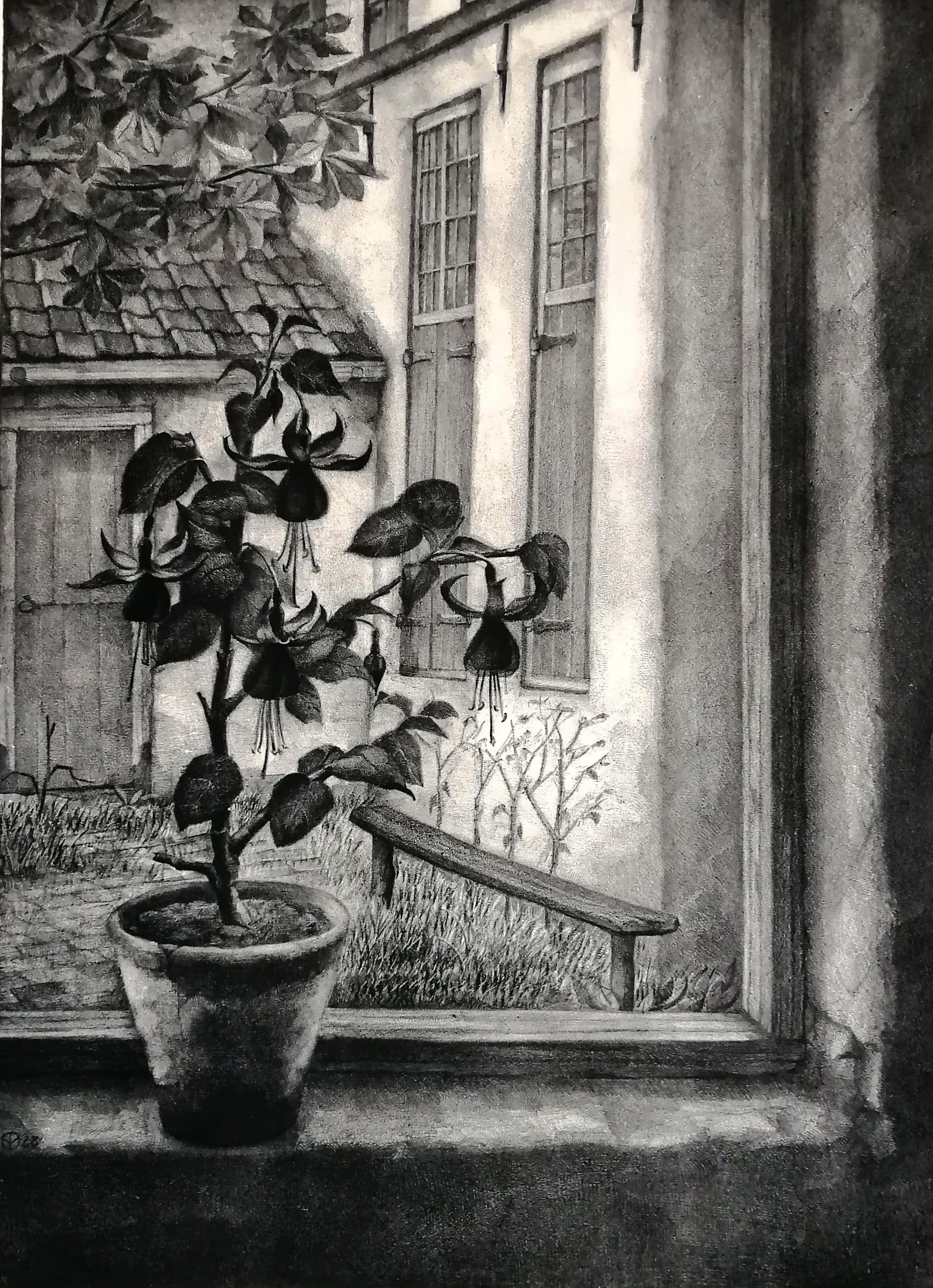 Aart van Dobbenburgh - Fuchsia in vensterbank kopen? Bied vanaf 70!