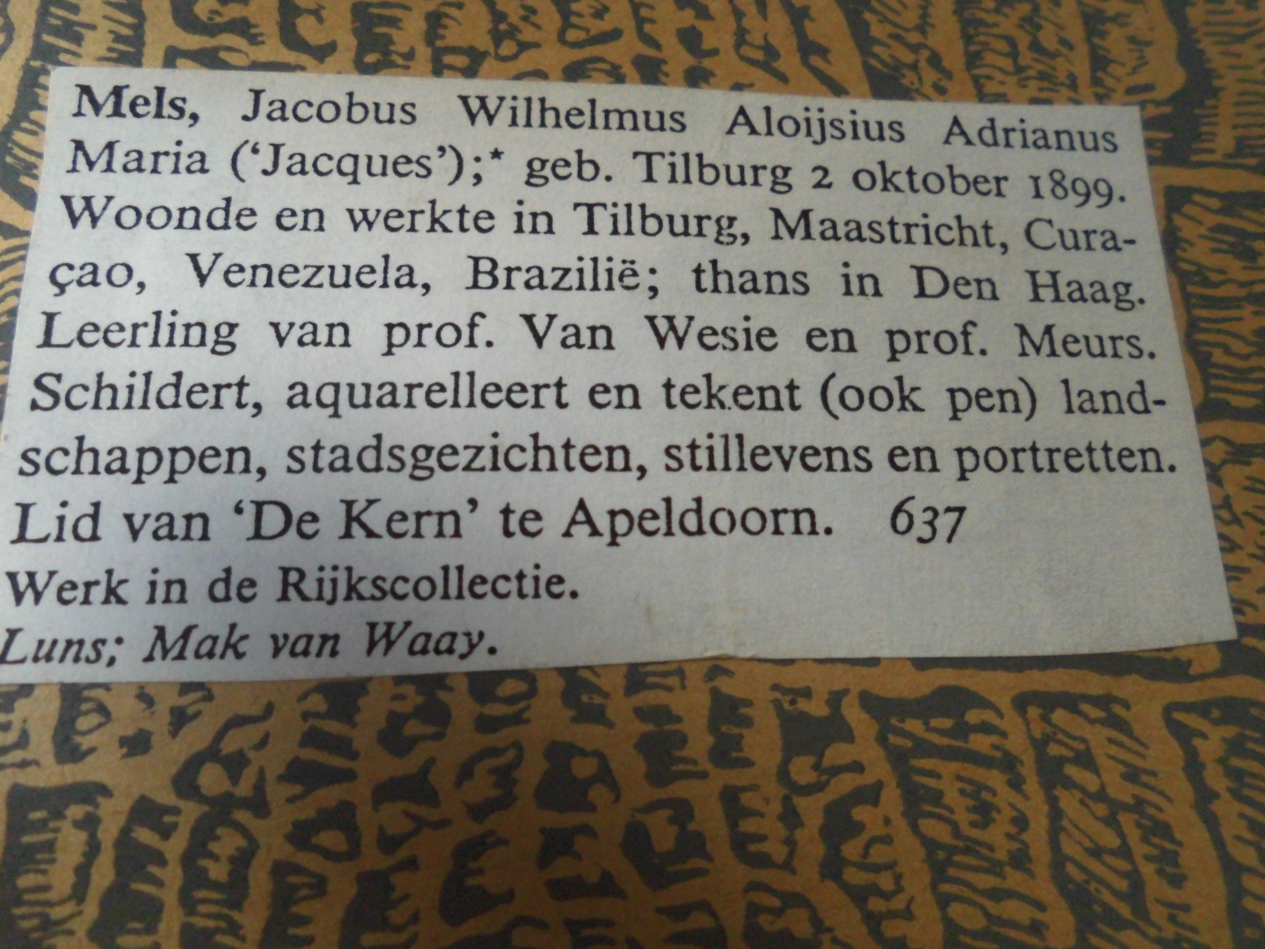 Jacques Mels - Aquarel - Winterlandschap kopen? Bied vanaf 70!