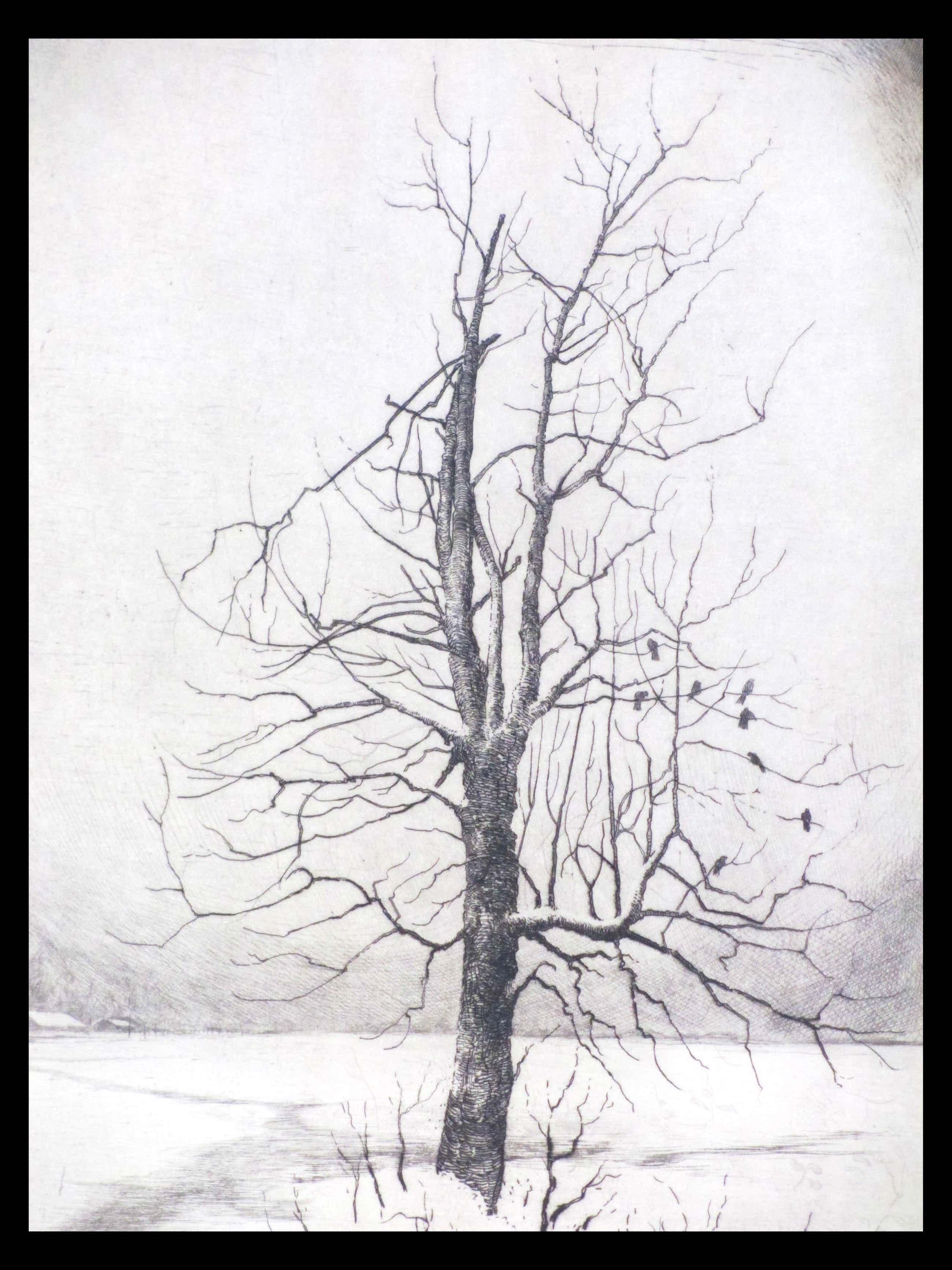 Hans van Dokkum - Besneeuwd landschap met vogels in dode boom - Ets kopen? Bied vanaf 35!