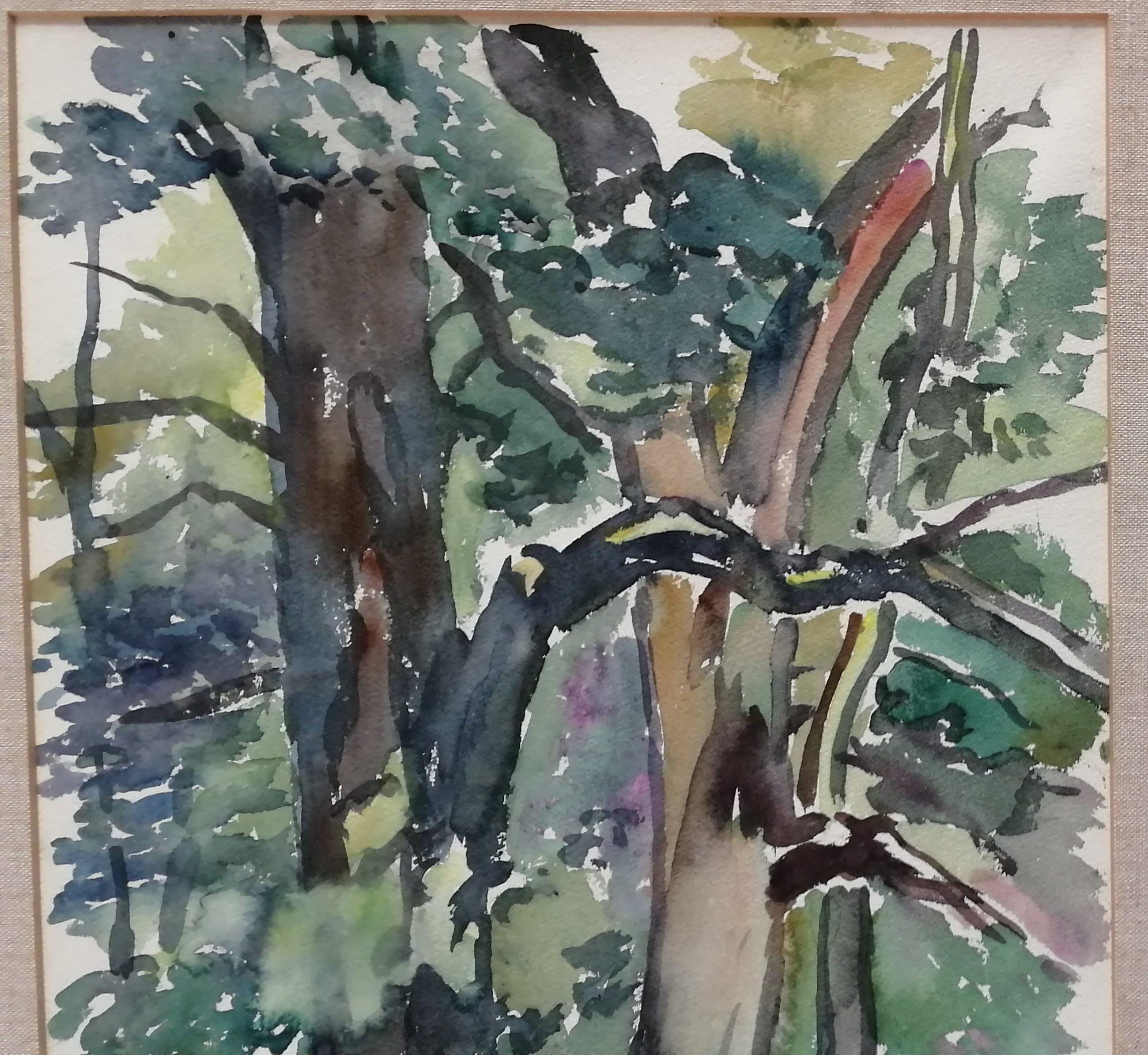 Jeanne Bieruma Oosting - Bomen kopen? Bied vanaf 95!