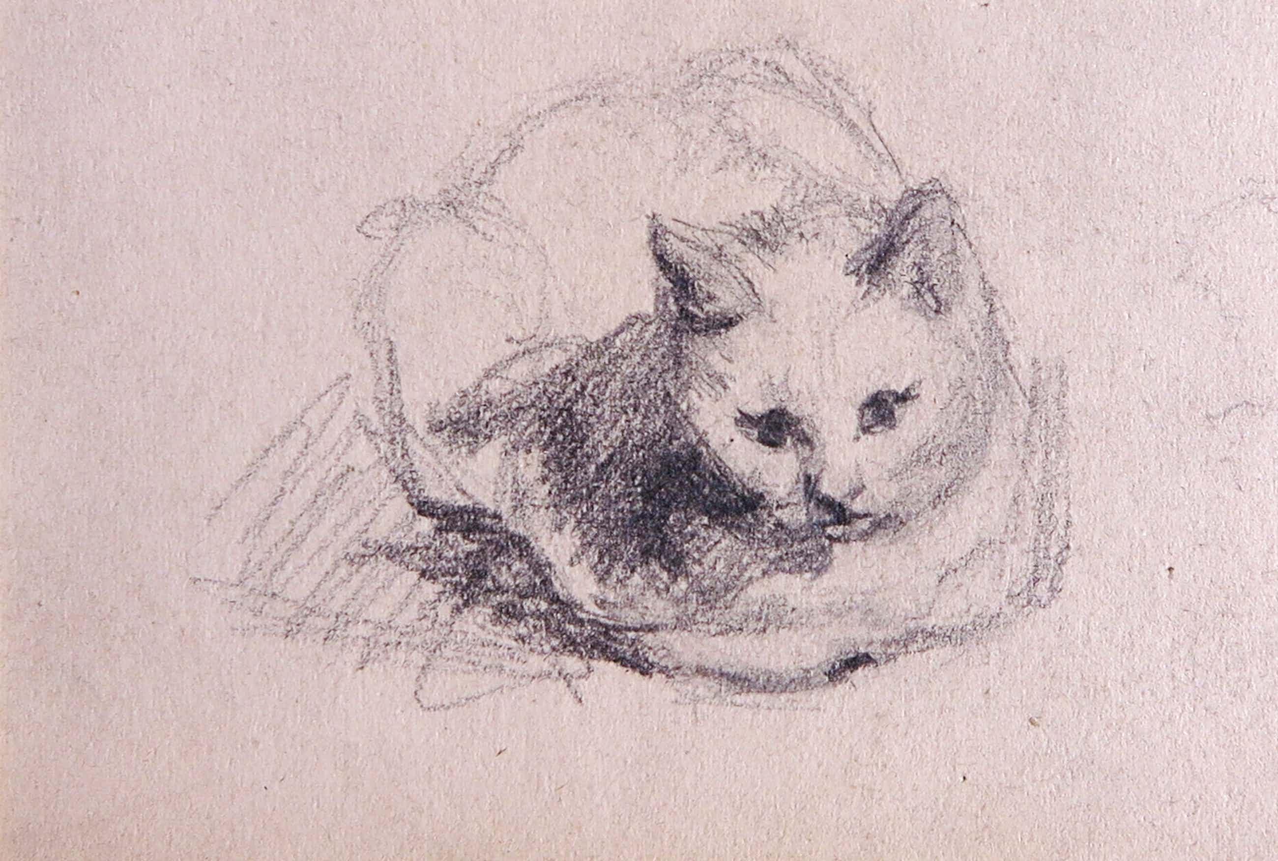 Niet of onleesbaar gesigneerd - Grafiet, Schets van een zittende kat kopen? Bied vanaf 21!
