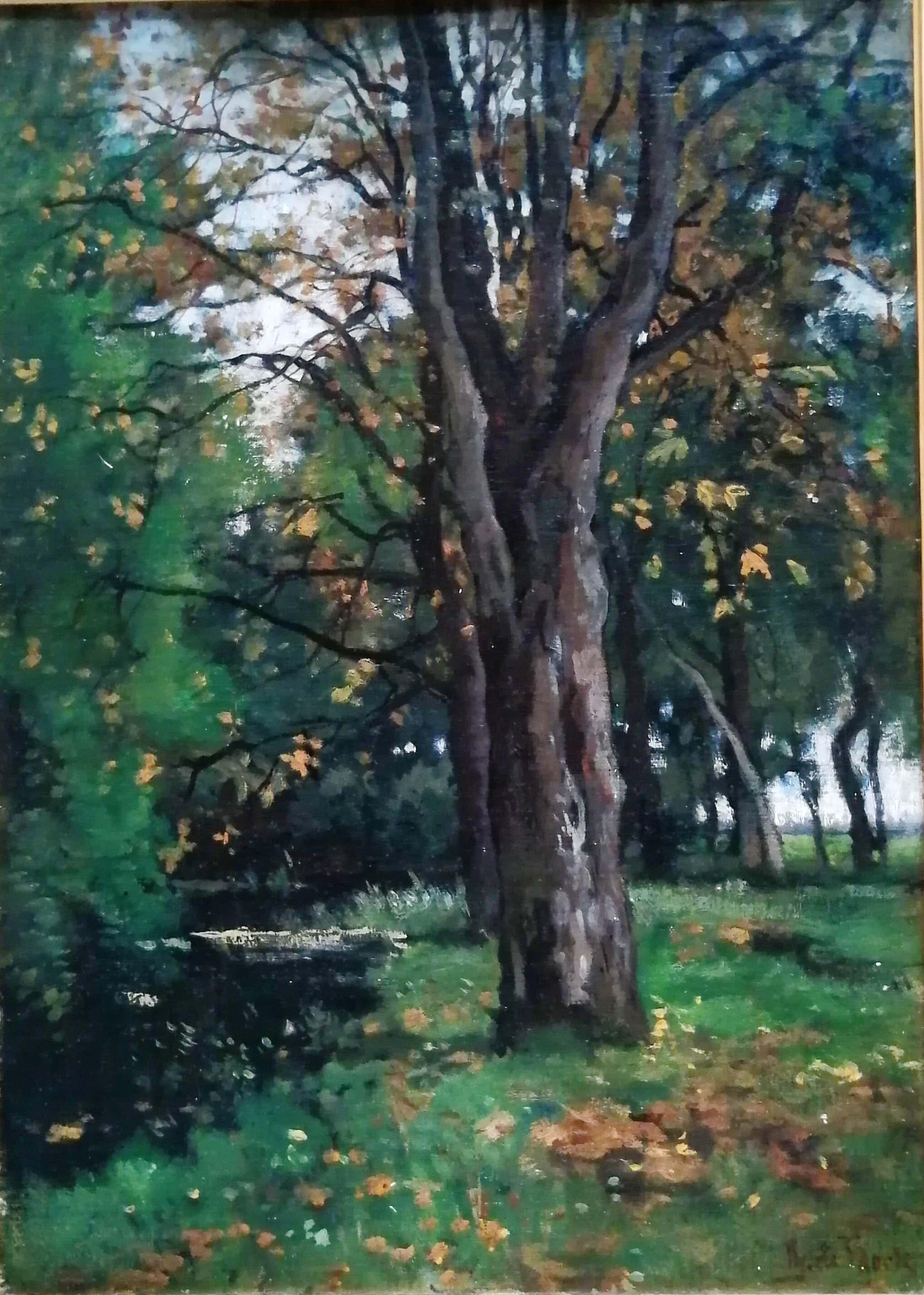 Theophile de Bock - Landschap met bomen aan een bosbeek kopen? Bied vanaf 975!