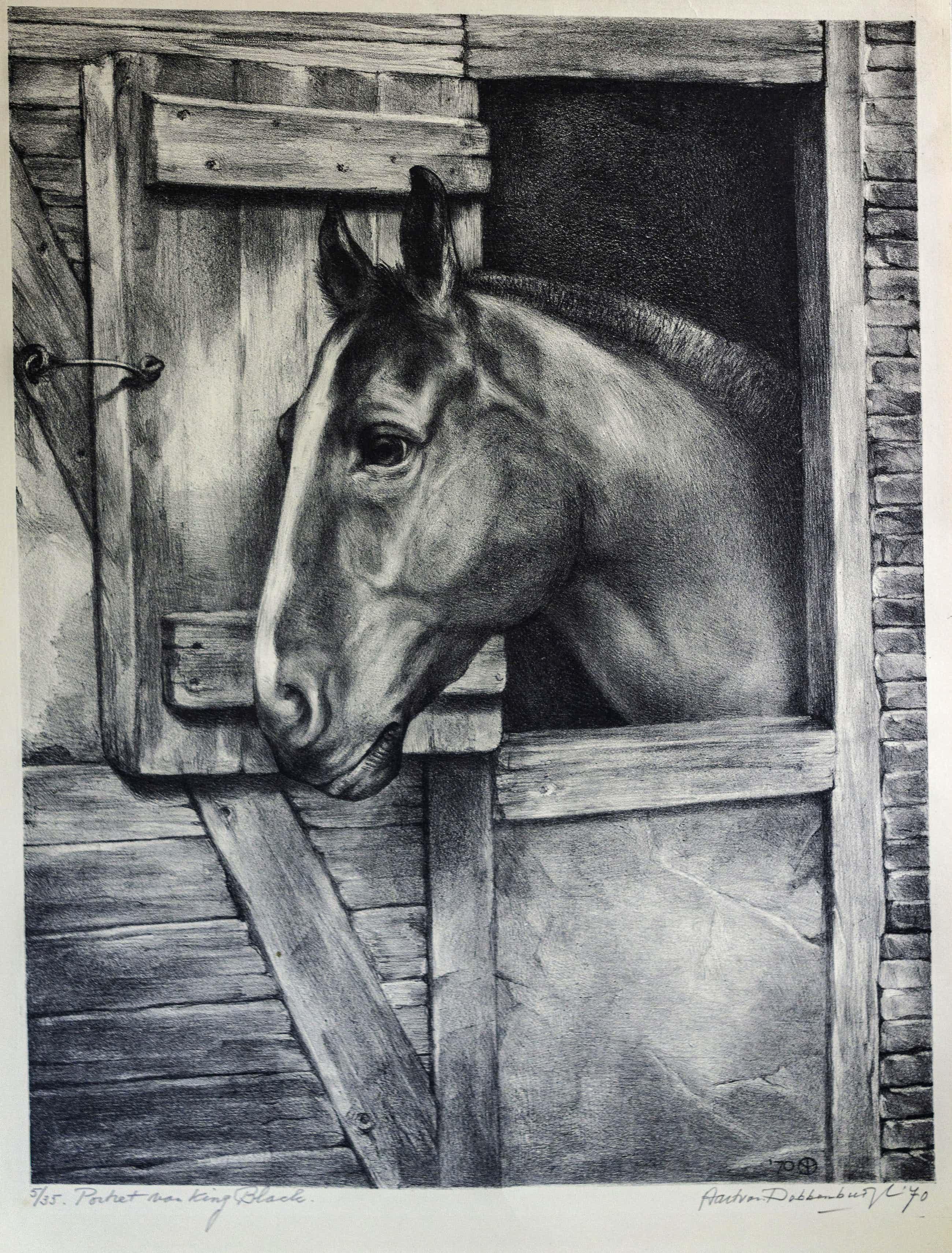 Aart van Dobbenburgh - 5/35 Portret Van King BLack kopen? Bied vanaf 40!