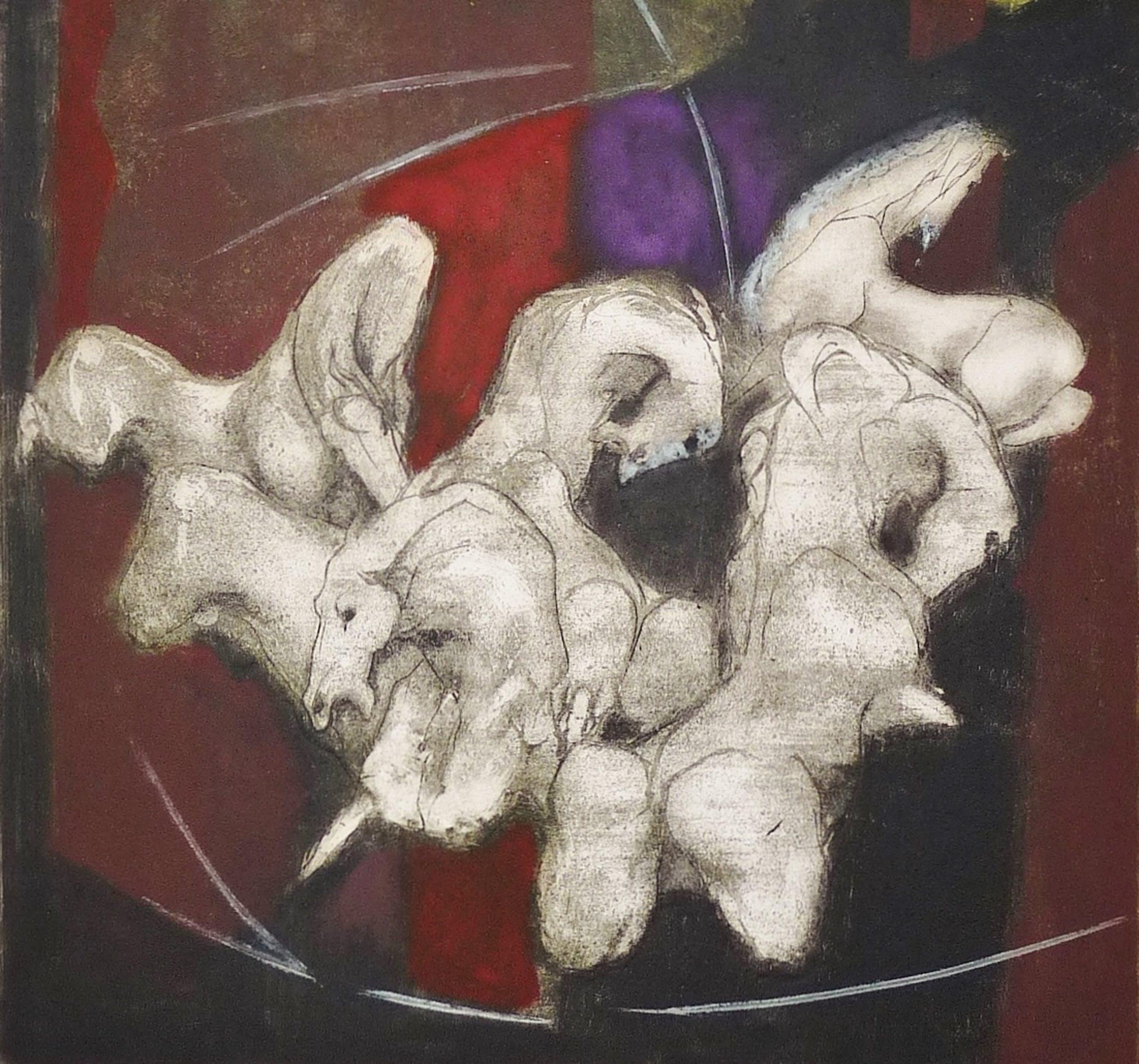 Ru van Rossem - De witte paarden (camarque) kopen? Bied vanaf 125!