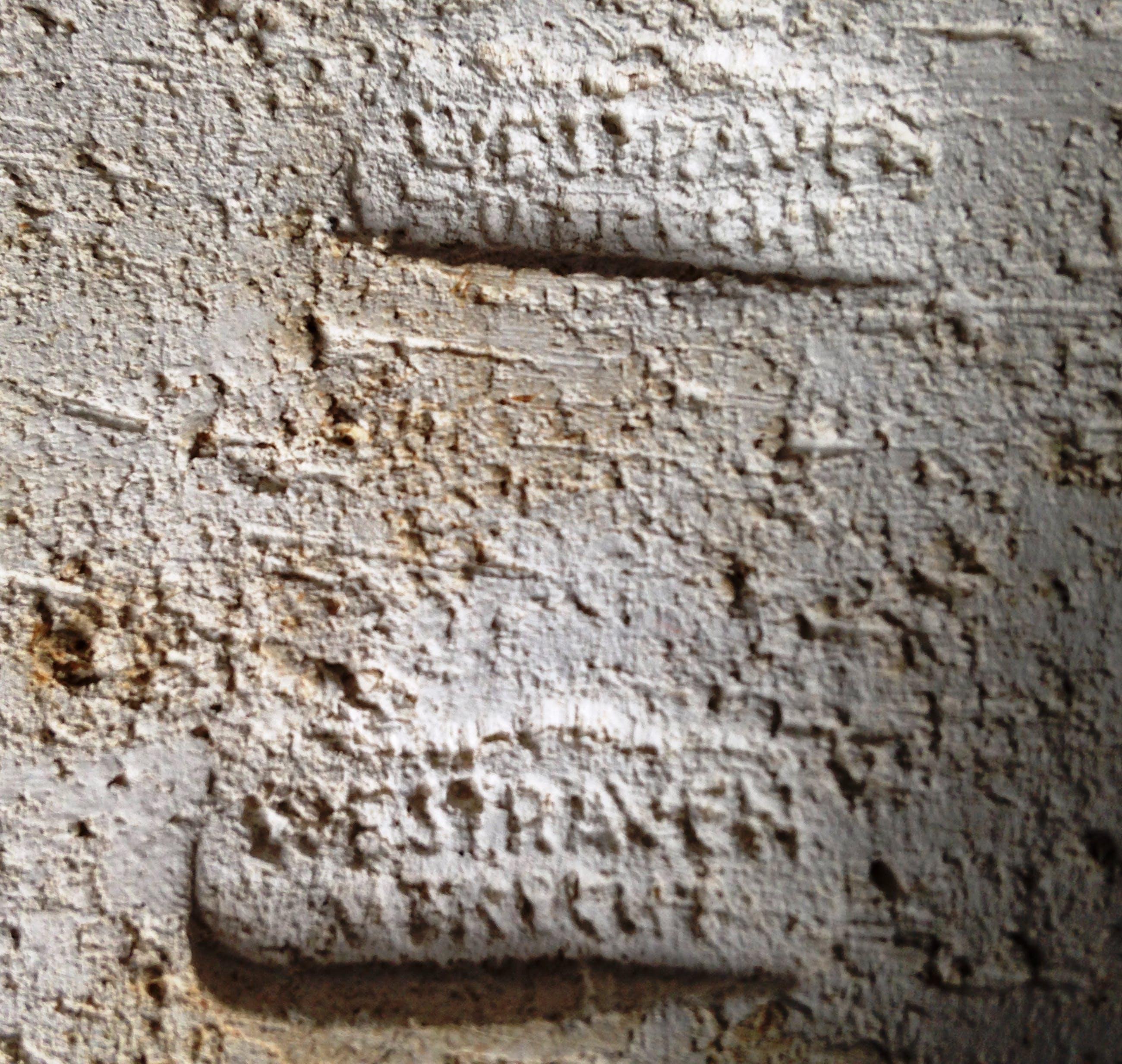 Faience- en Tegelfabriek Westraven - wandtegel, grofbakkende klei met afbeelding van een stier kopen? Bied vanaf 29!