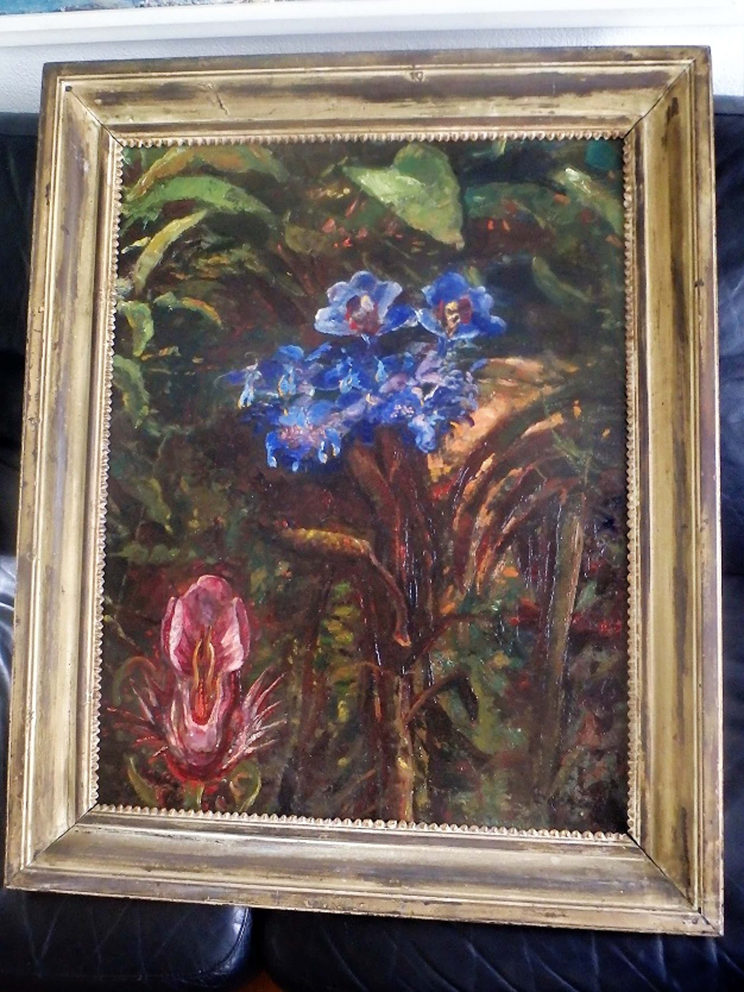 Jacobus Doeser - bloemen en planten kopen? Bied vanaf 350!