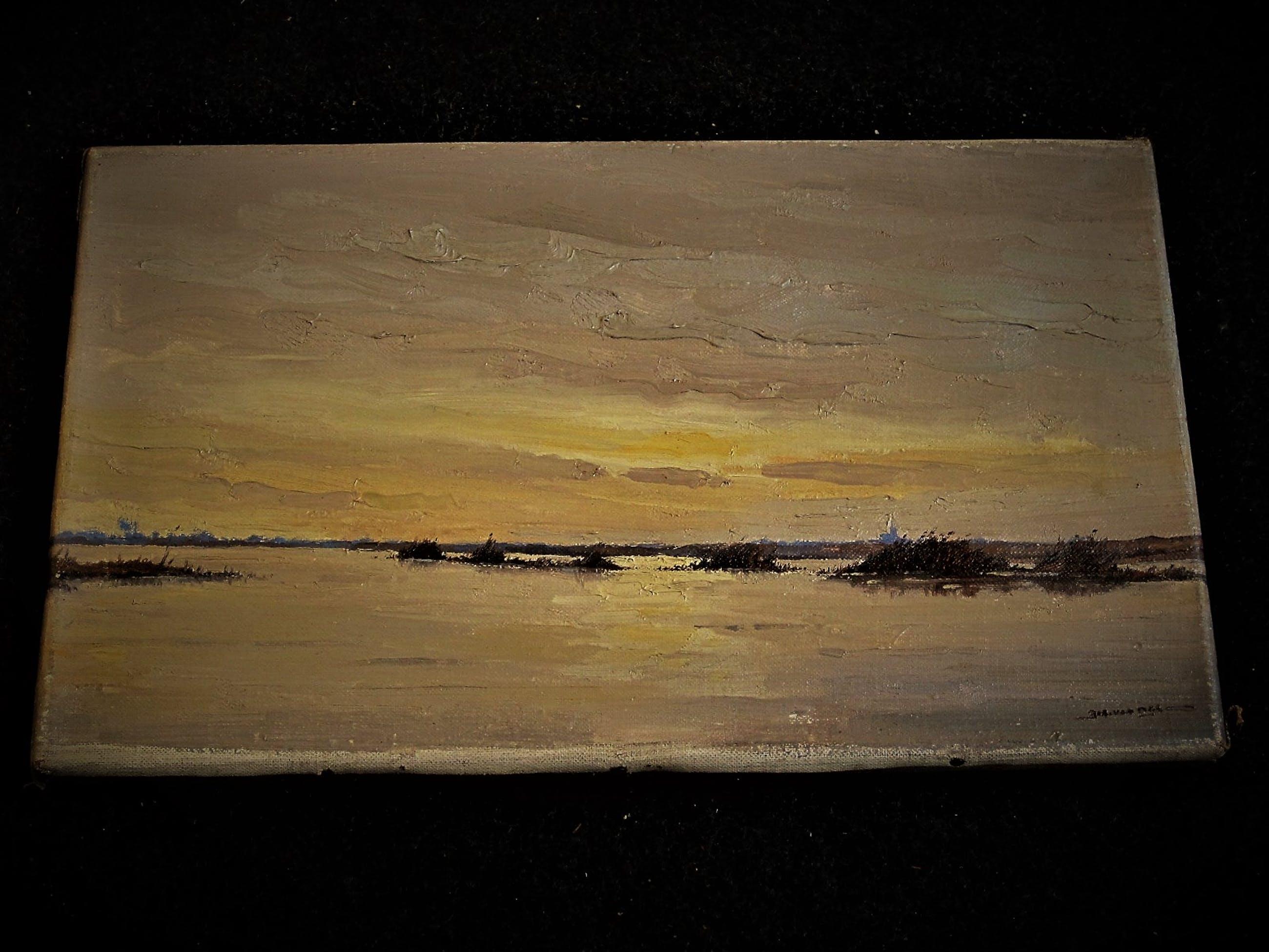 """Niet of onleesbaar gesigneerd - Oud impressionistisch olieverf """"invallende avond op de Plas"""" gesigneerd kopen? Bied vanaf 10!"""