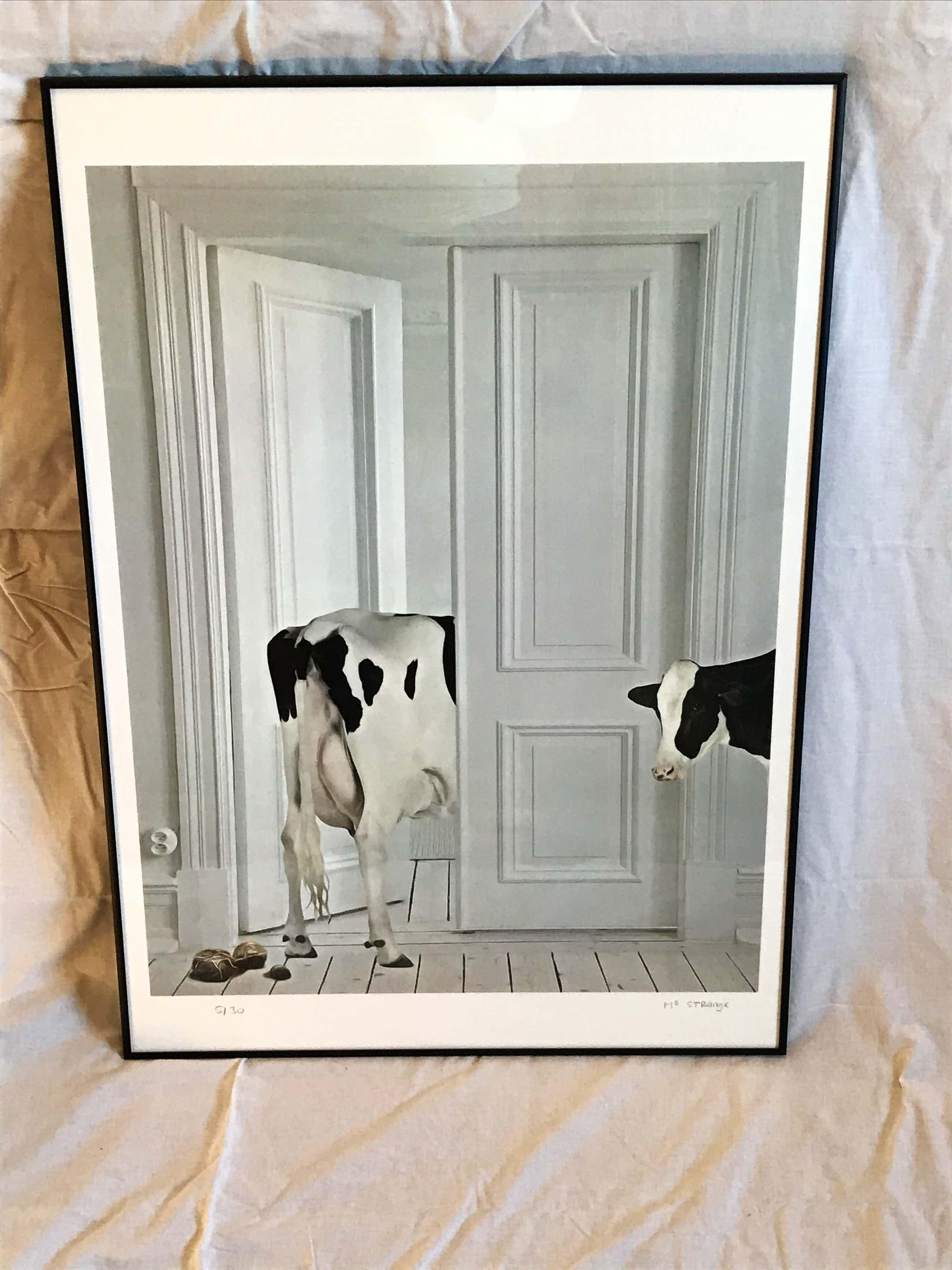 Mr. Strange - Koe in het appartement kopen? Bied vanaf 195!