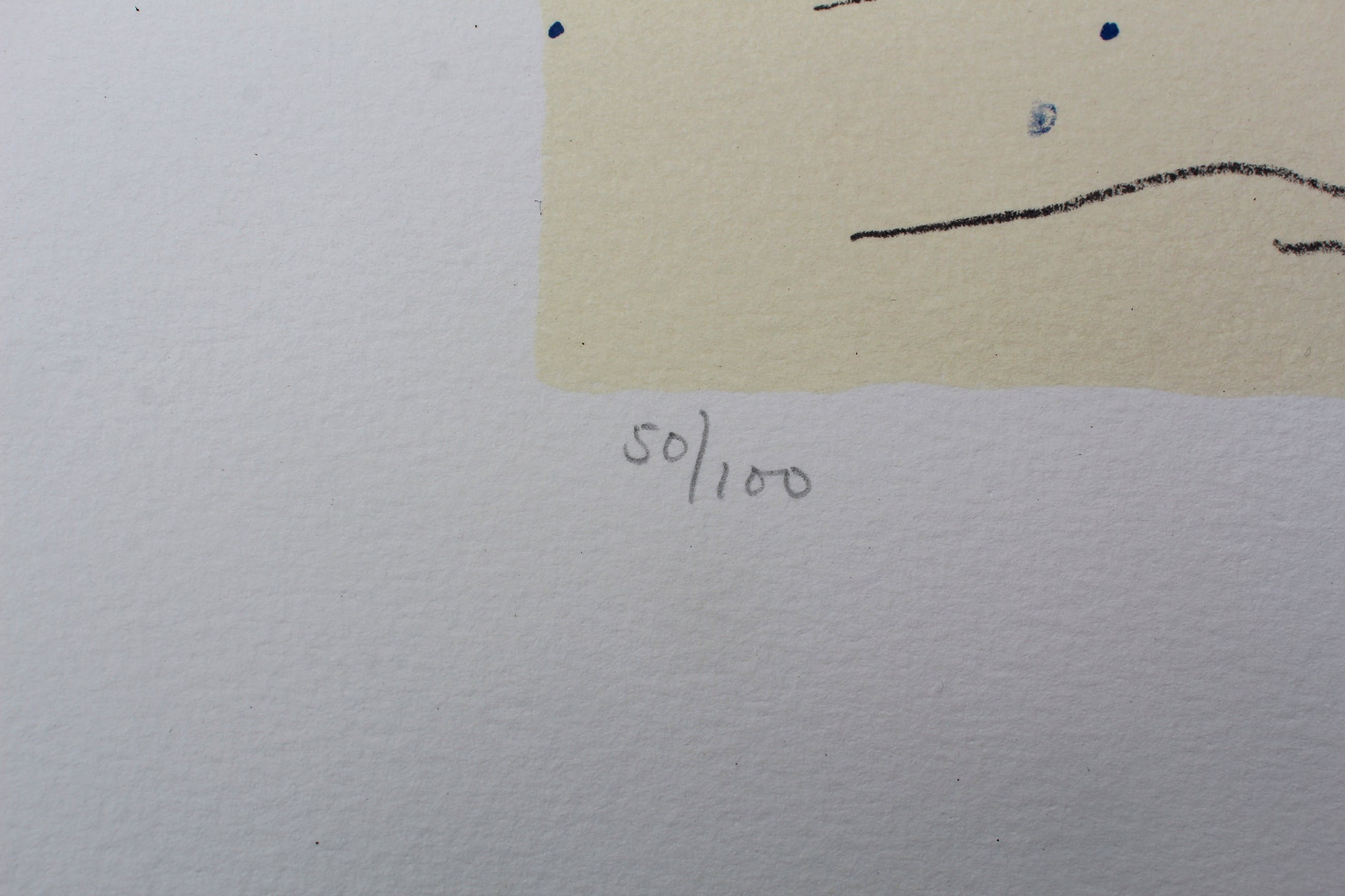 Kees Salentijn - zeefdruk -1997 kopen? Bied vanaf 49!