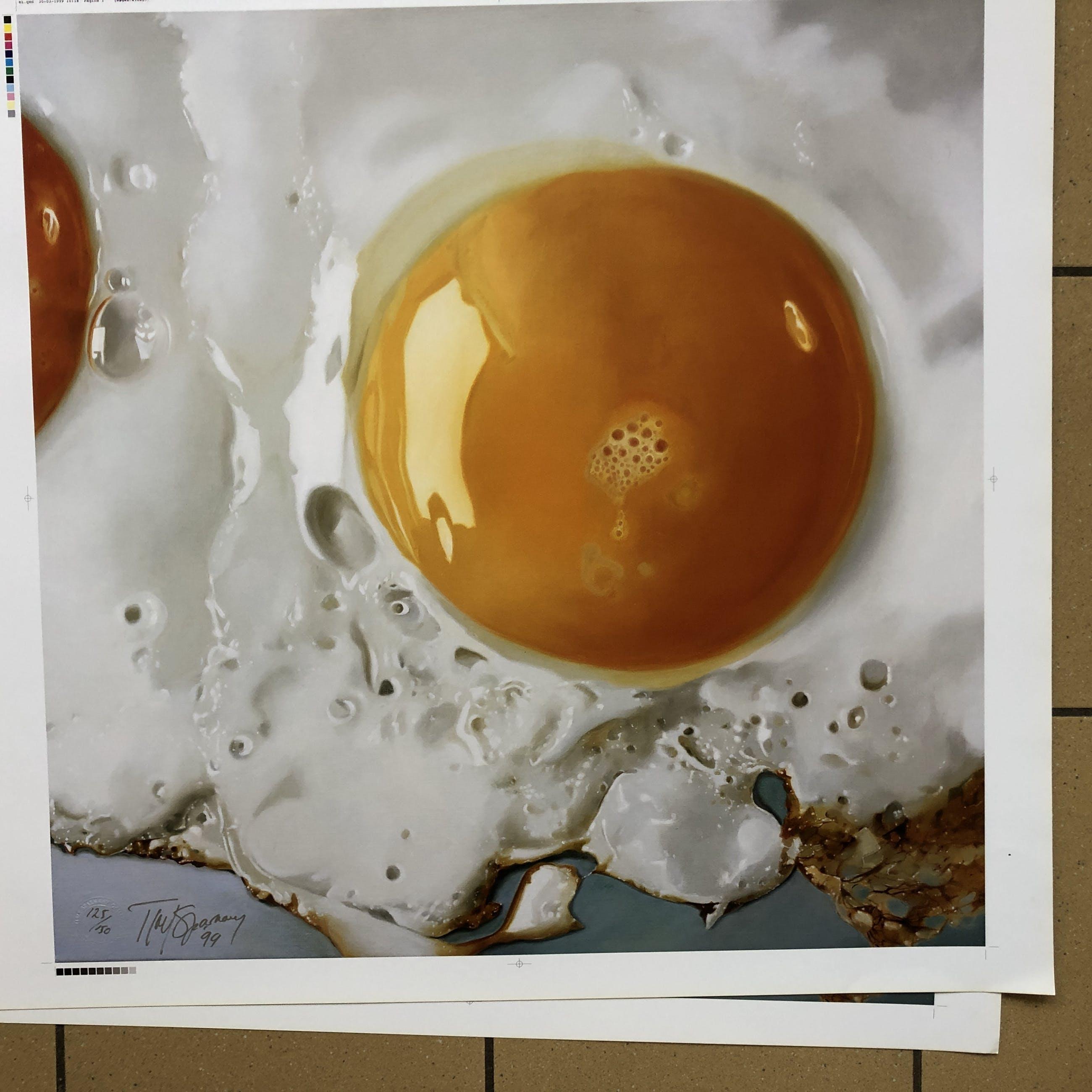 Tjalf Sparnaay - Ei/Egg kopen? Bied vanaf 350!