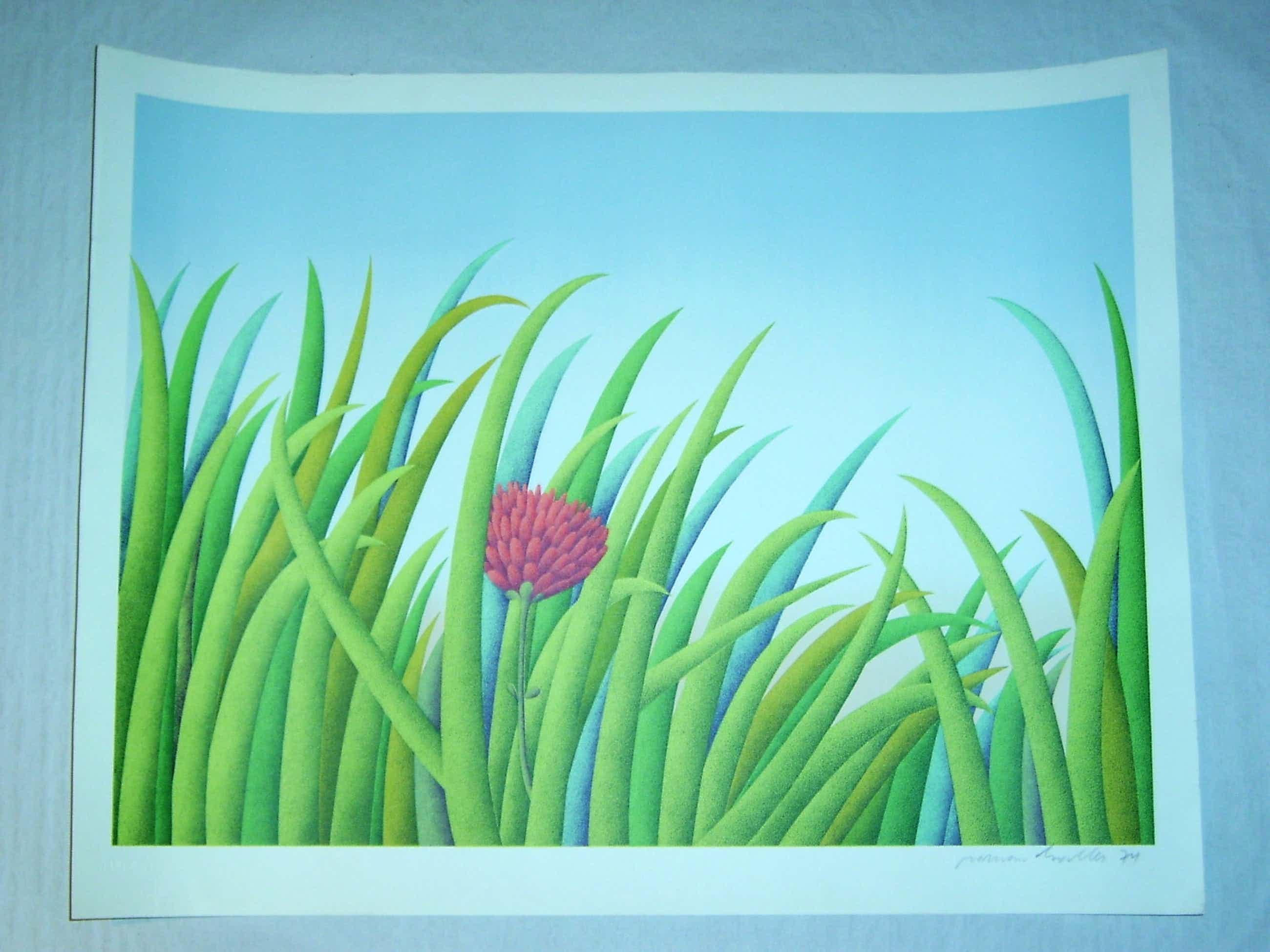 Roman Haller - -EREIGNIS NATUR-, Lithografie in 10 Farben auf Bütten, handsigniert, numeriert kopen? Bied vanaf 90!