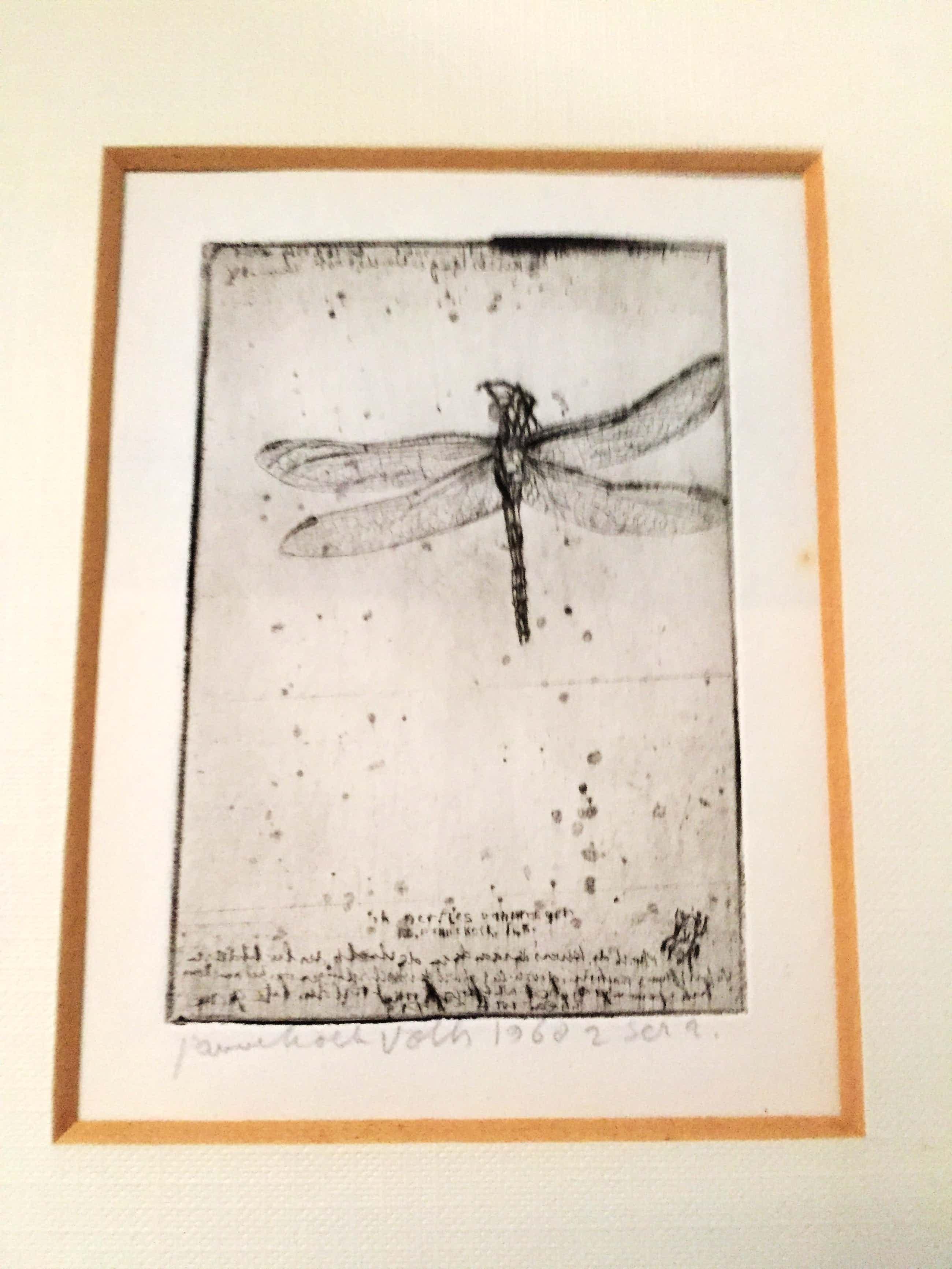 Frans Pannekoek - Libelle kopen? Bied vanaf 250!