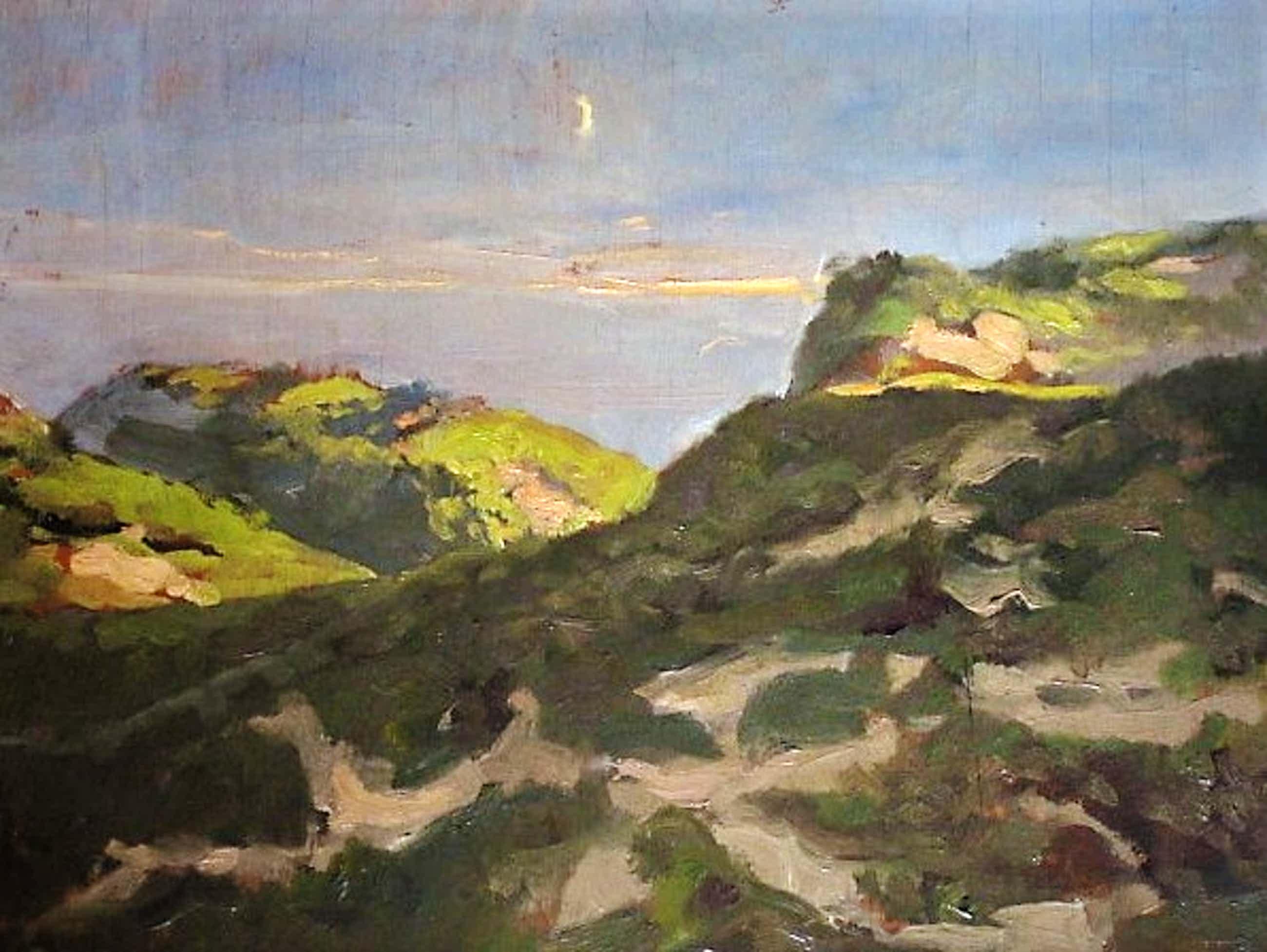 """Anton Funke Kupper - Sfeervol impressionistisch olieverf """"Duinlandschap bij invallende avond"""" gesigne kopen? Bied vanaf 58!"""