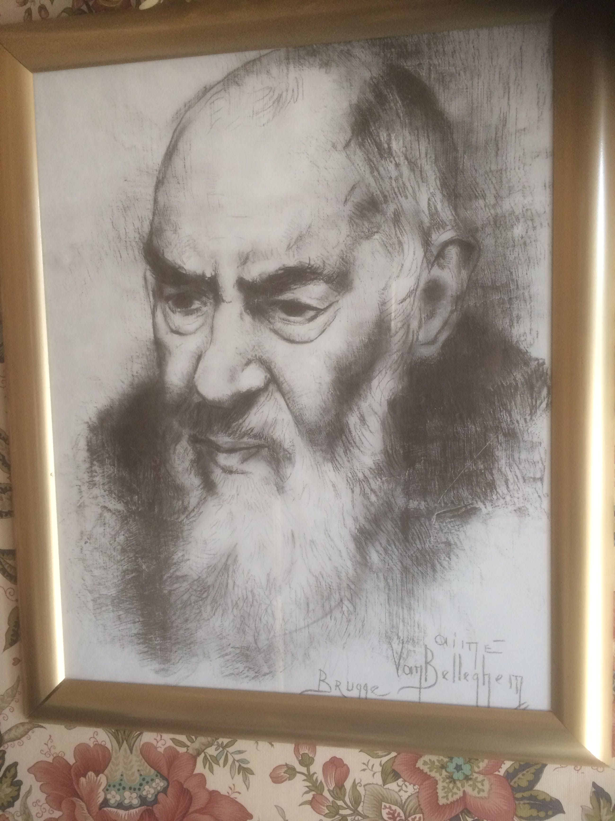 Aime van Belleghem - Pater Pio kopen? Bied vanaf 120!