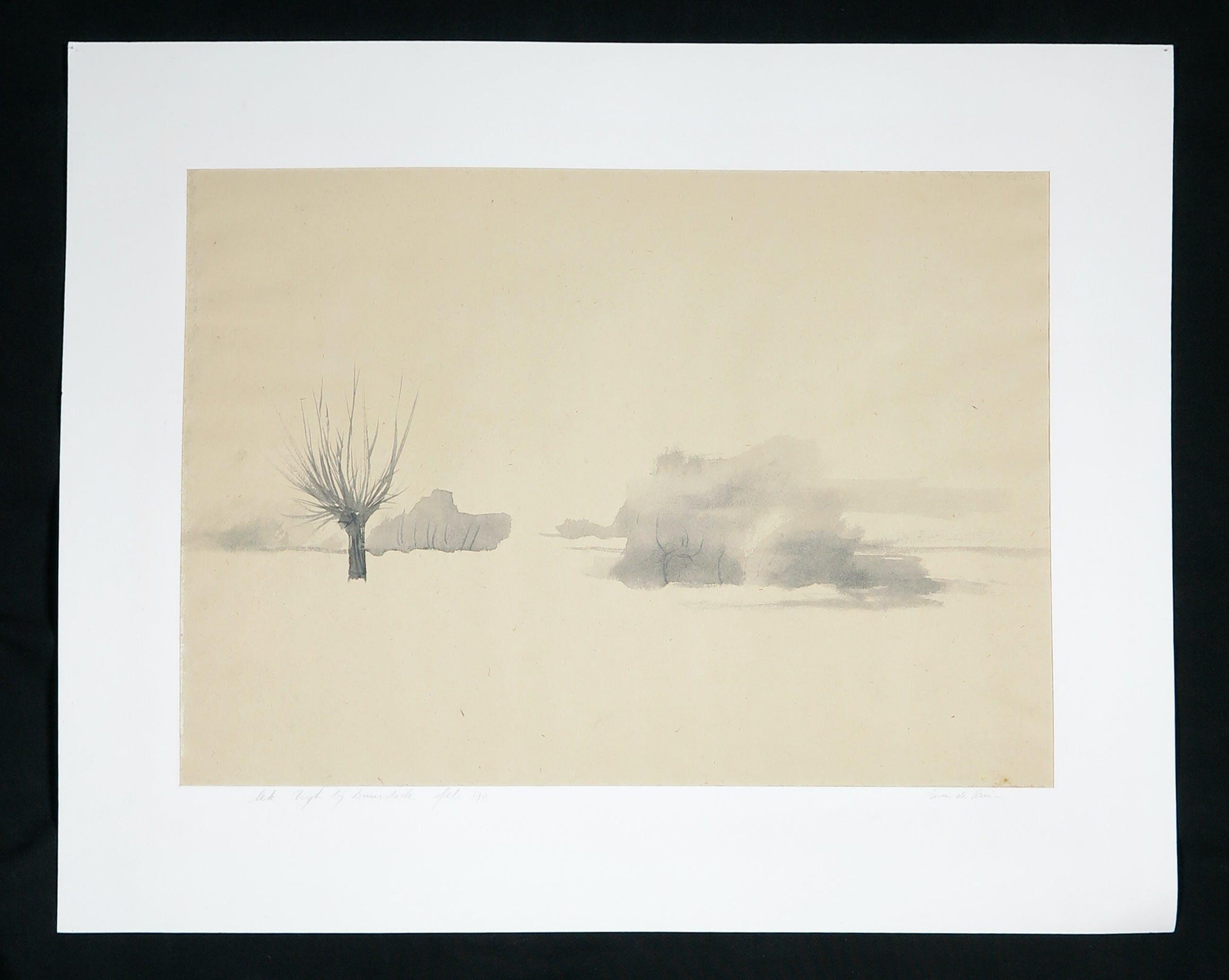Wim de Bruin - Inkt en aquarel, Lek kopen? Bied vanaf 1!