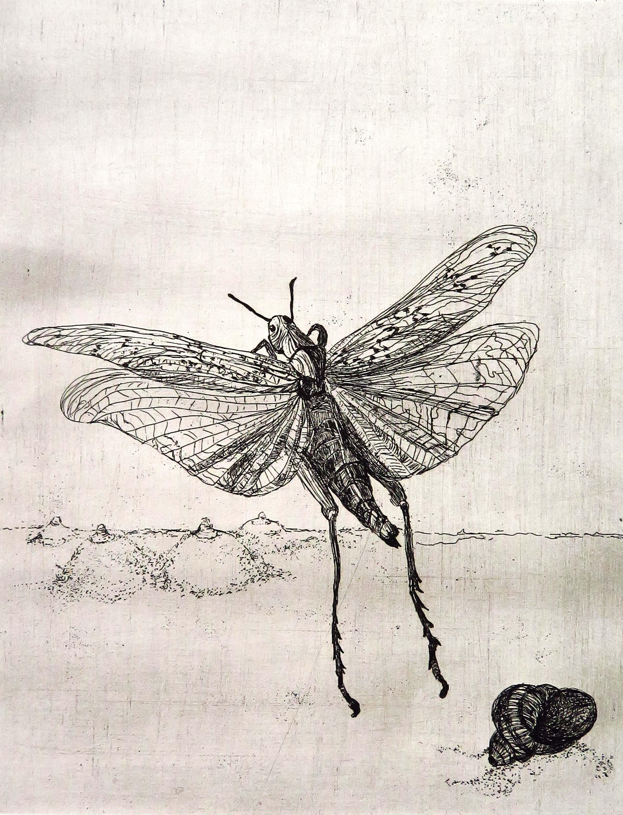 Marijke Hertog - Vliegende krekel met slak kopen? Bied vanaf 25!