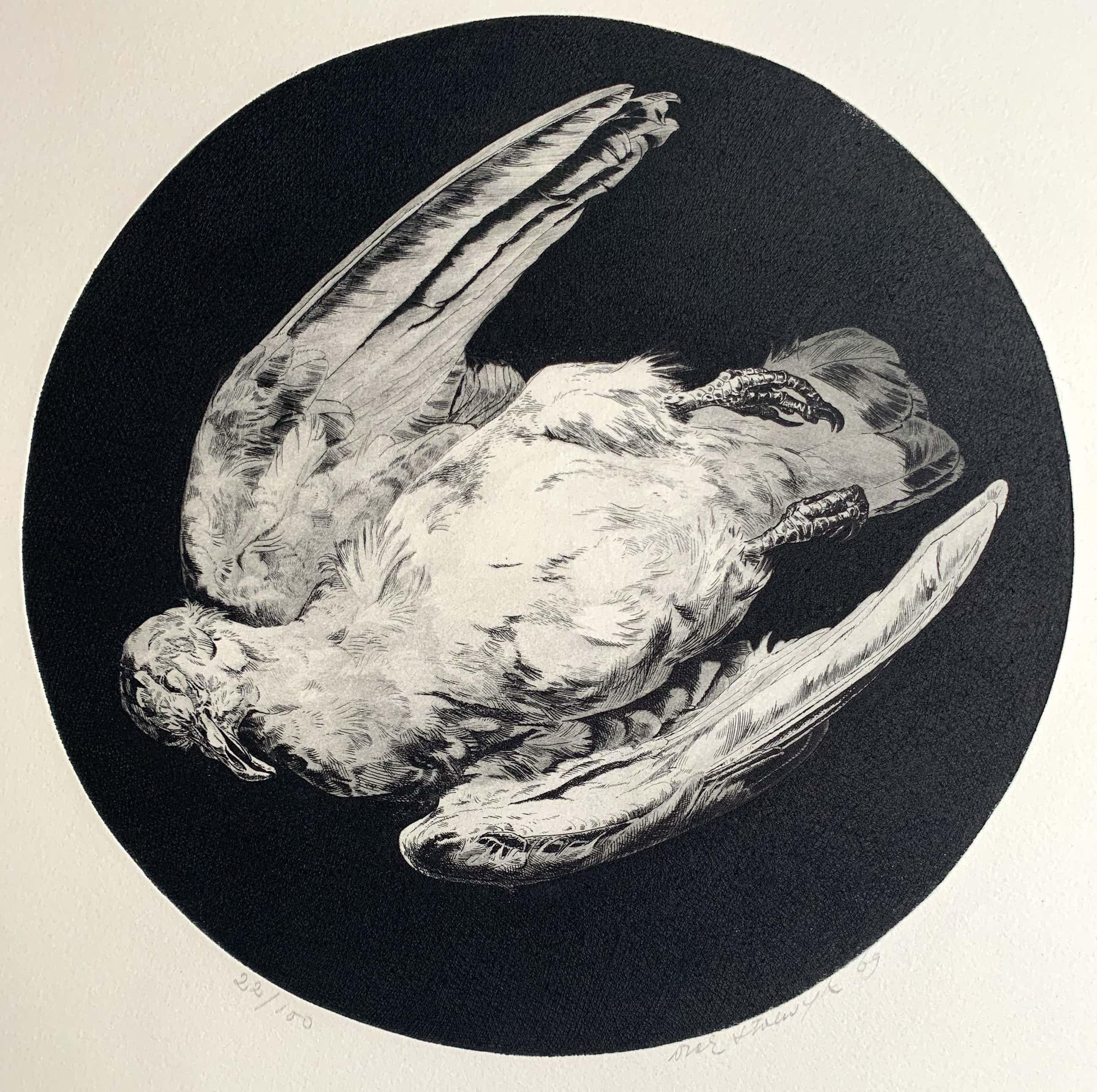 Dick Stolwijk - Ets | 'Dode duif' | 1969 kopen? Bied vanaf 60!