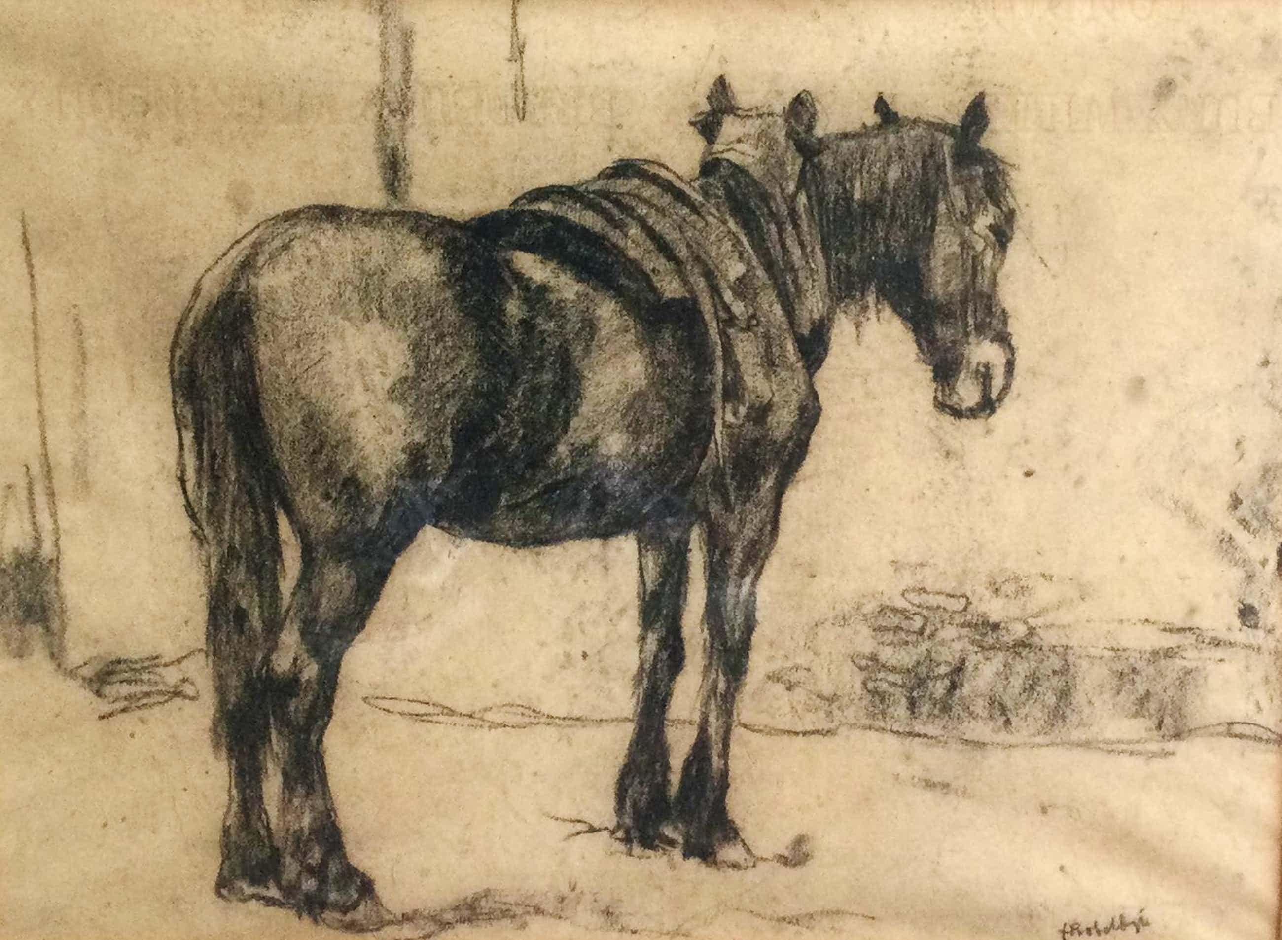 Felicien Bobeldijk - 8478-15, Paardje kopen? Bied vanaf 200!