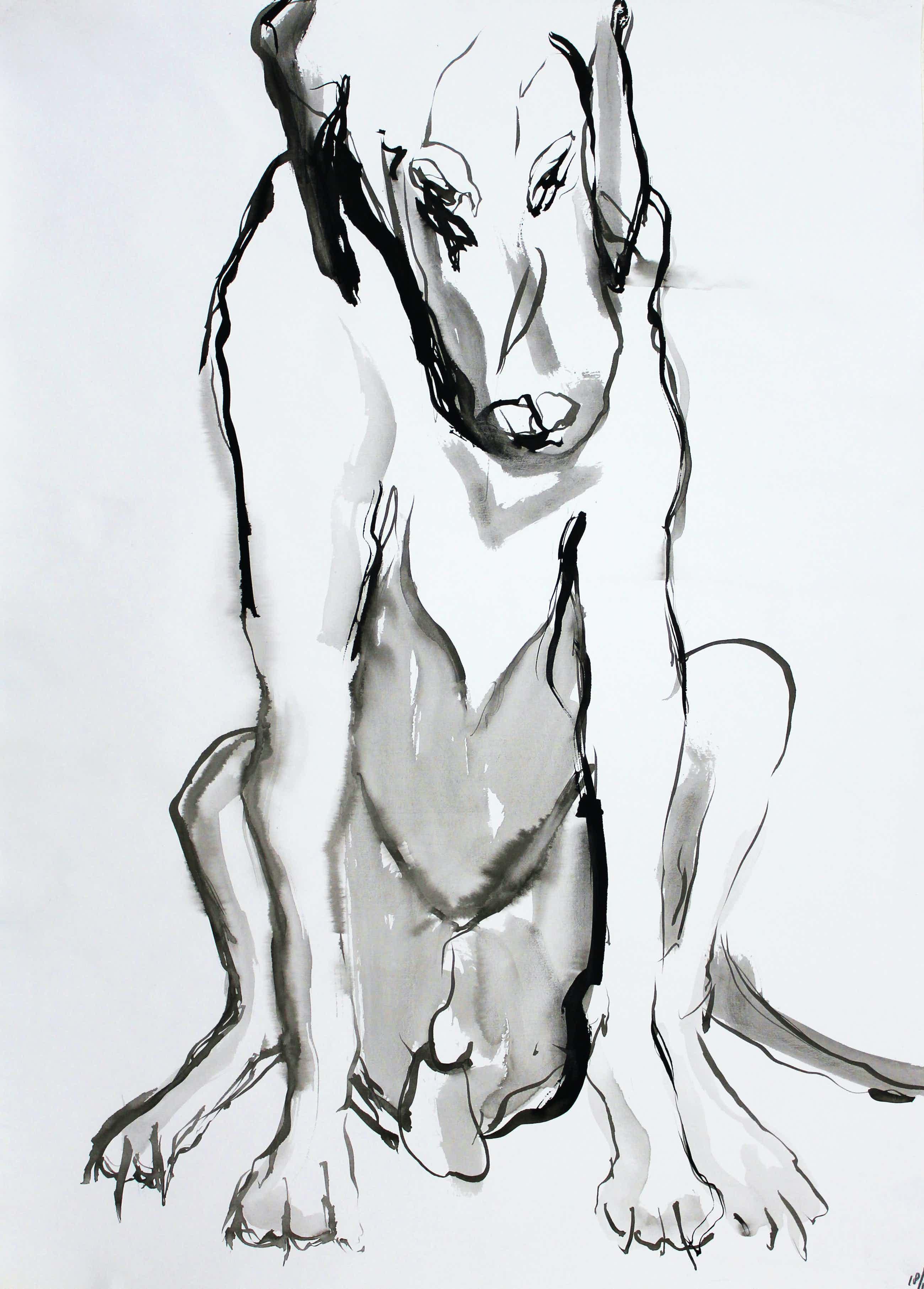 Ad van Riel - Hond (4) kopen? Bied vanaf 35!