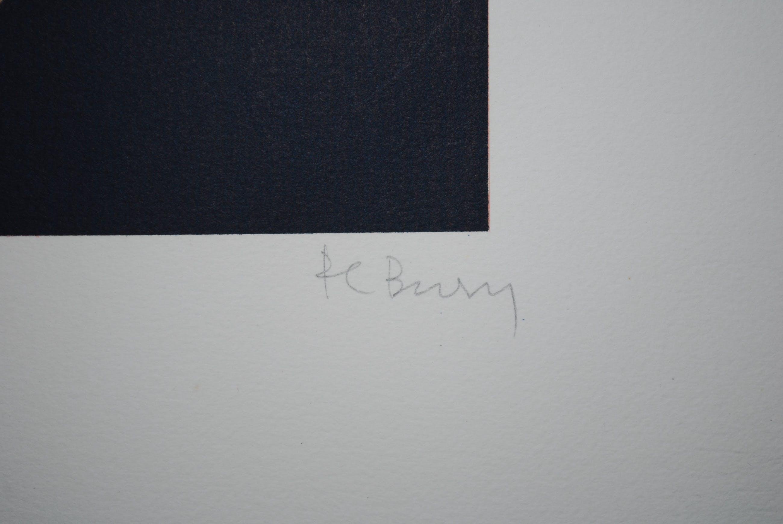 Pol Bury - 40 BÂTONS et 1 CERCLE -Litho, oplage 75 ex. -signatuur, nummer, titel in potlood kopen? Bied vanaf 200!